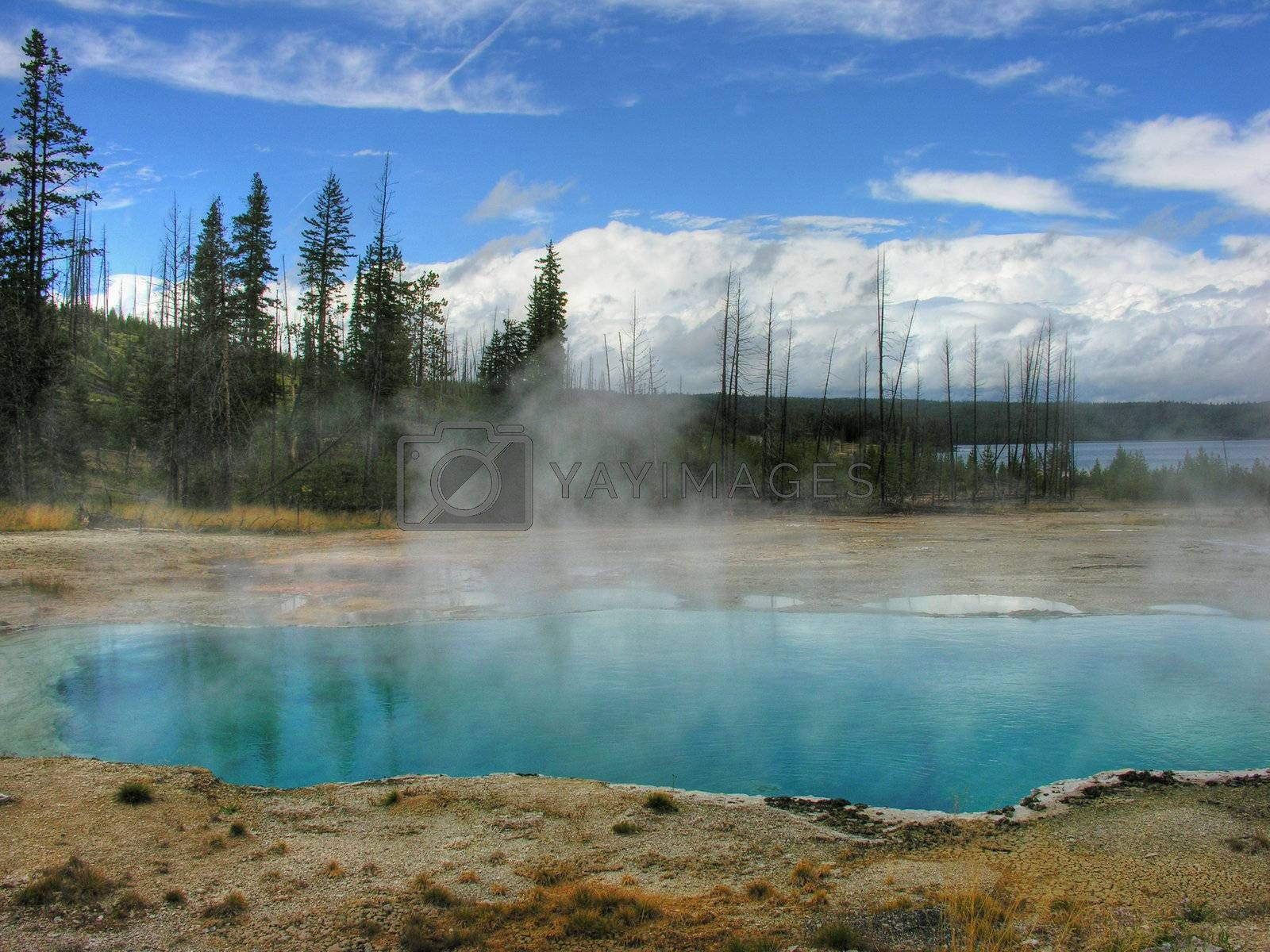 Yellowstone, Wyoming by jovannig