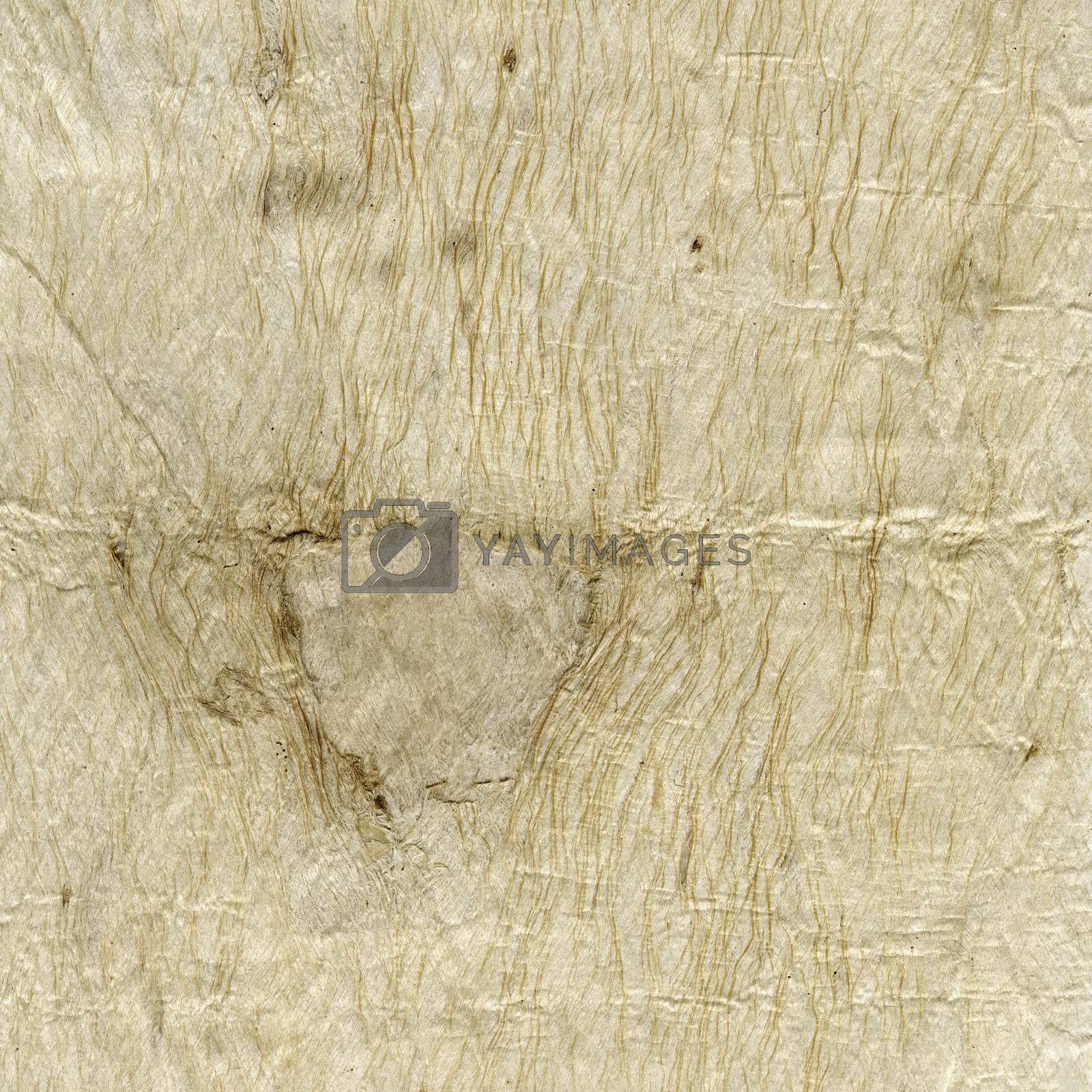 Royalty free image of handmade paper texture by PixelsAway