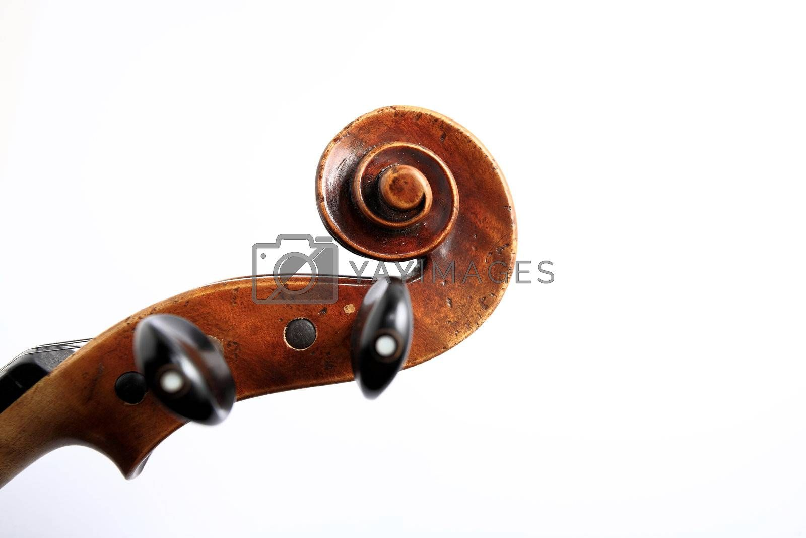 Royalty free image of violin head by leungchopan