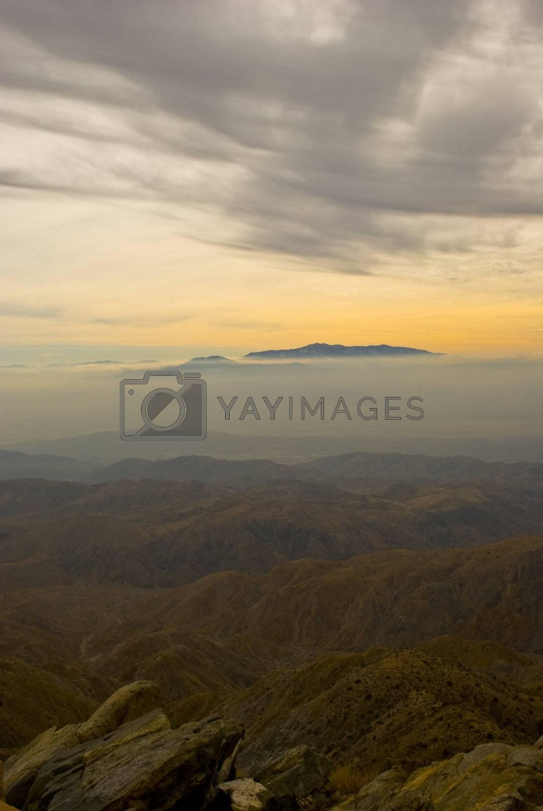 Fog by omairkha