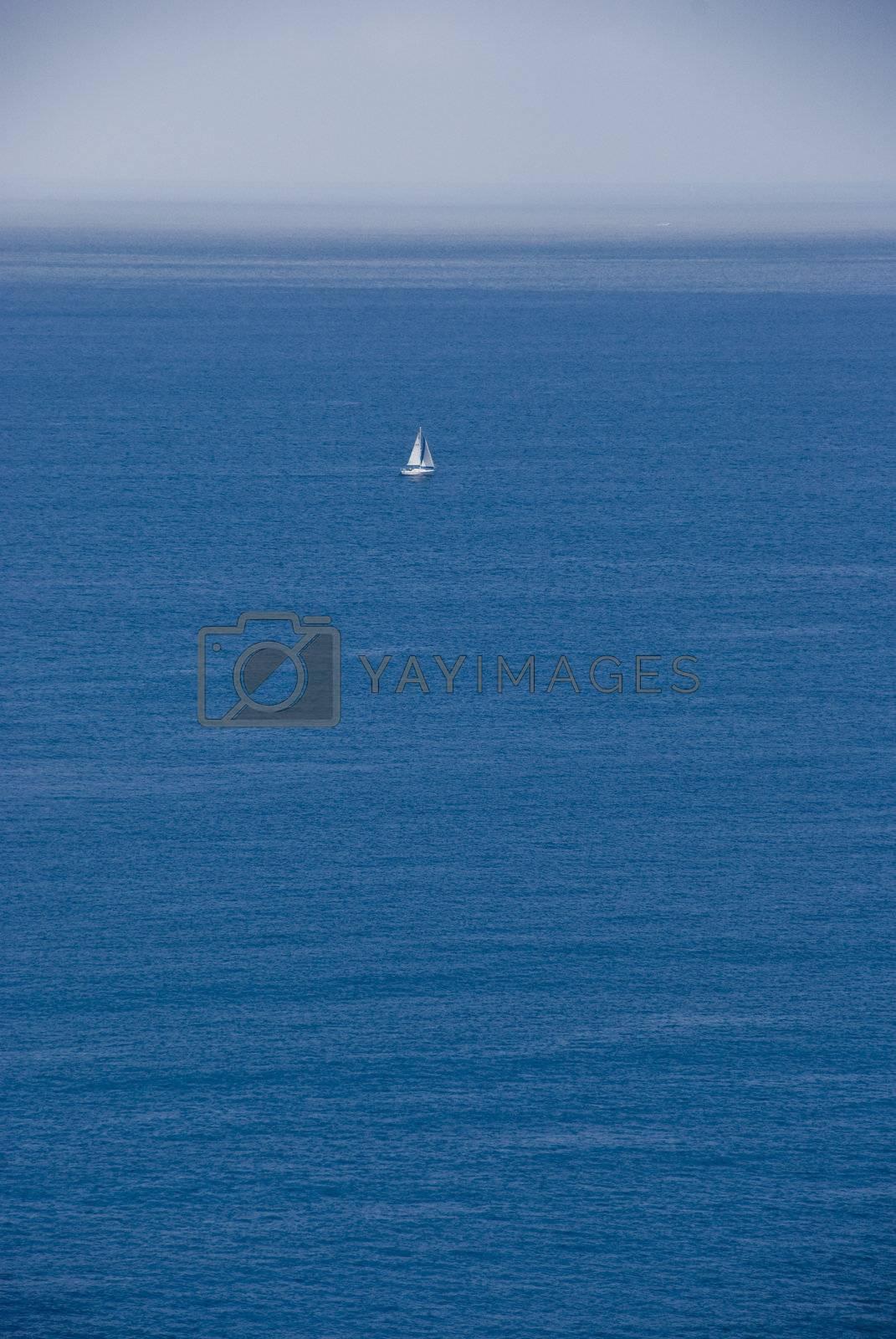 Sail by omairkha