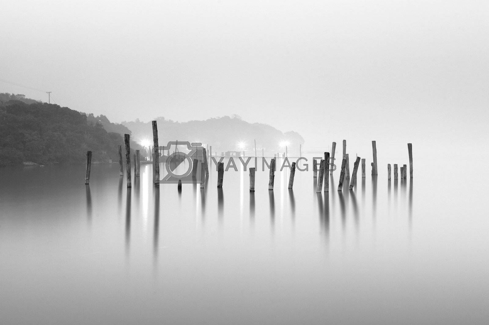 wood in water, black and white by leungchopan
