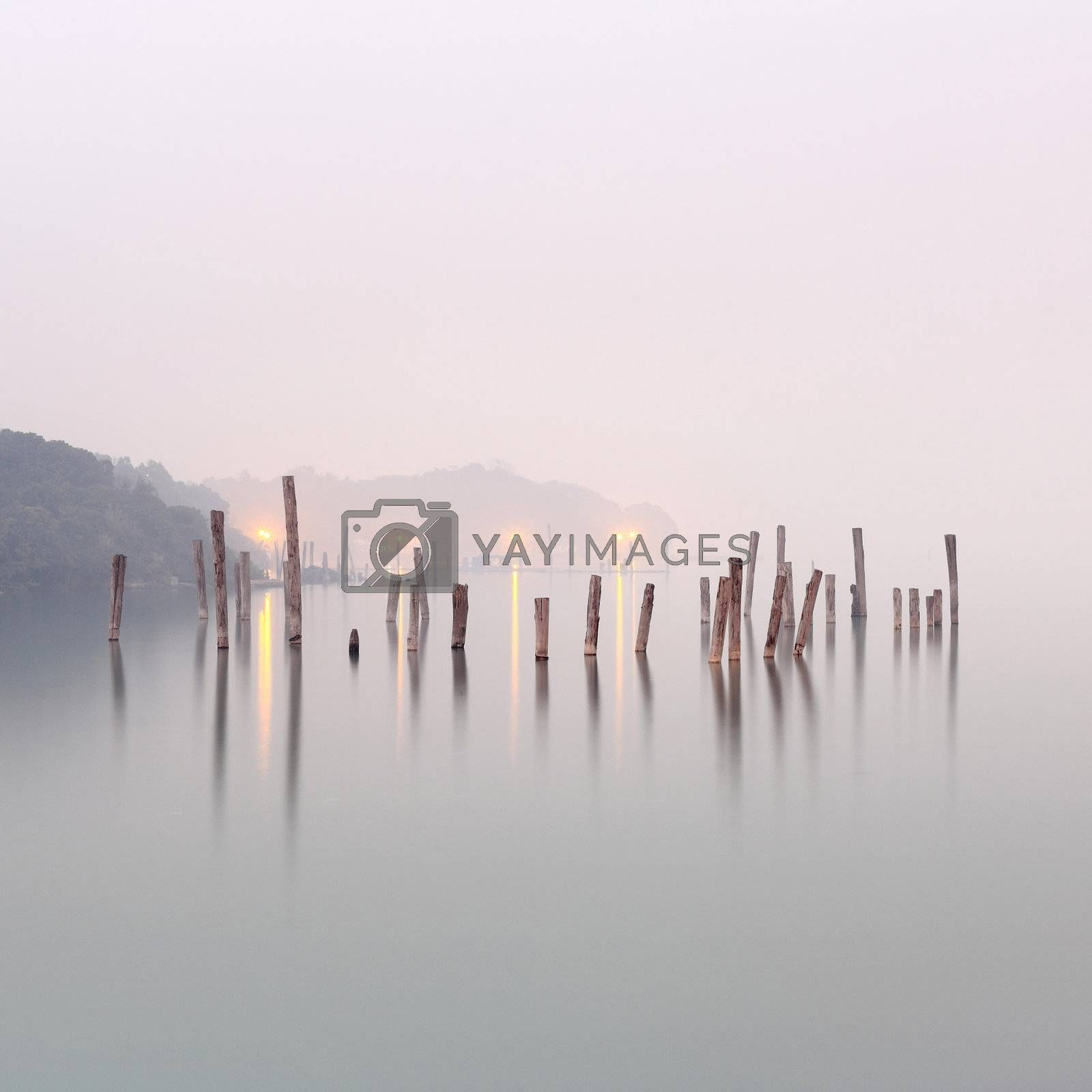 Royalty free image of wood in water by leungchopan