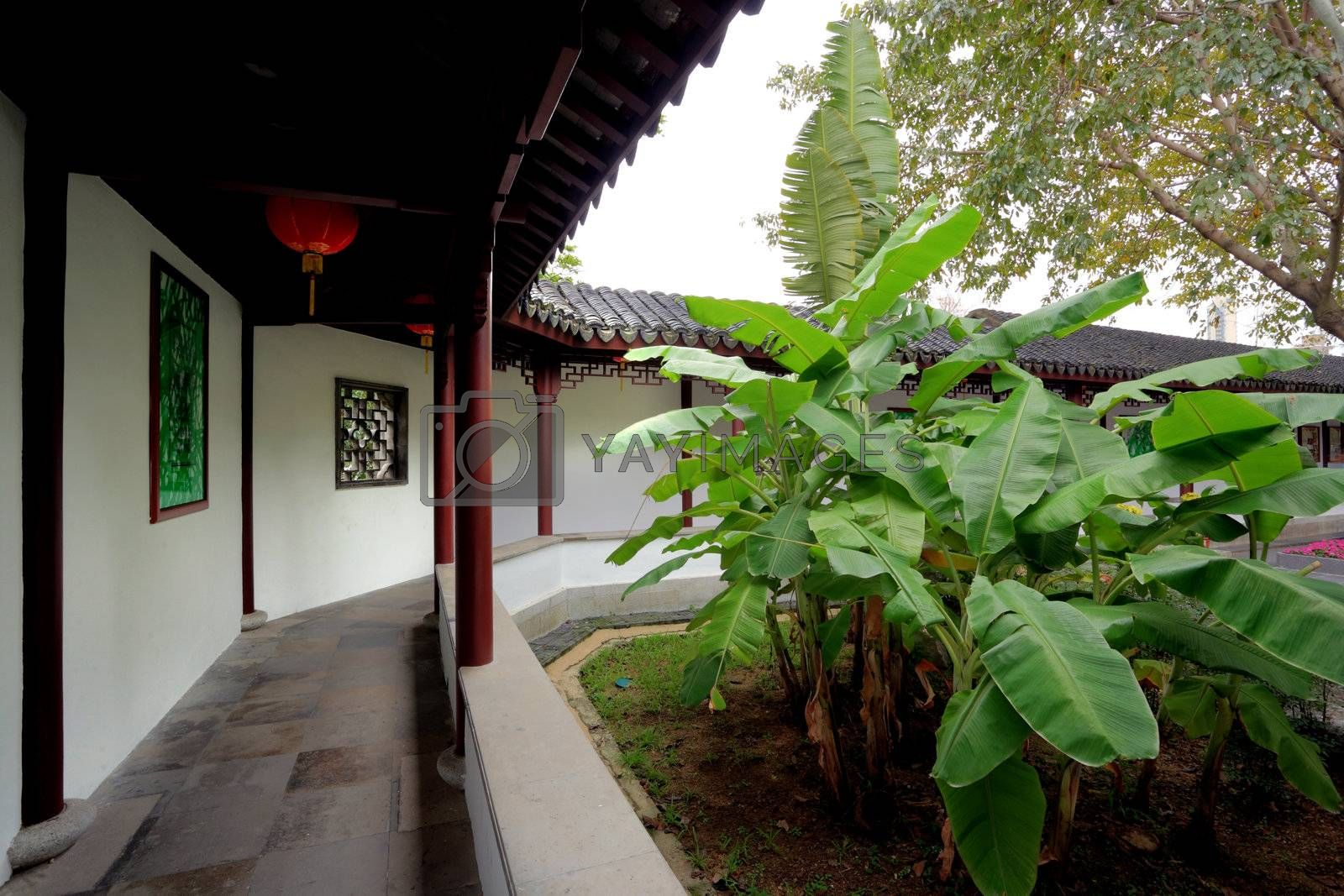 Royalty free image of Chinese traditional garden in Hong Kong, China by leungchopan