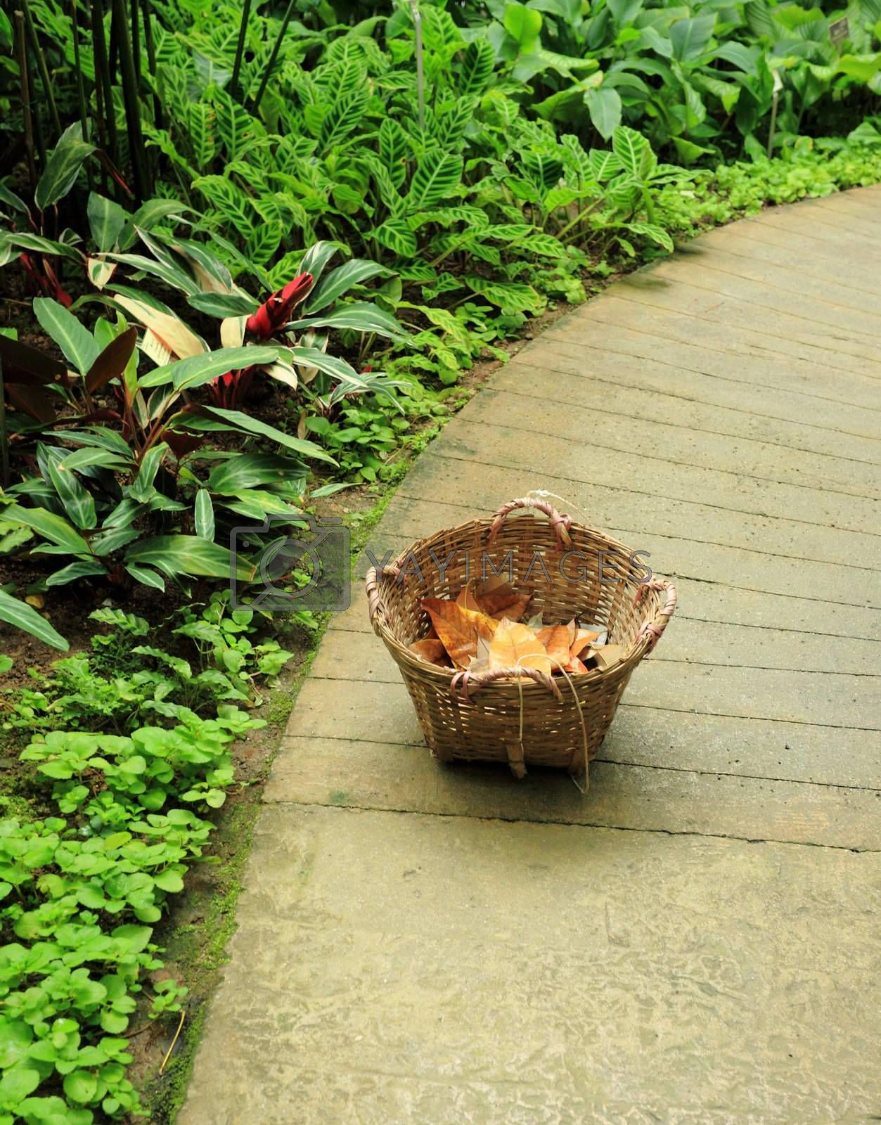 basket in garedn with dry leaf by leungchopan