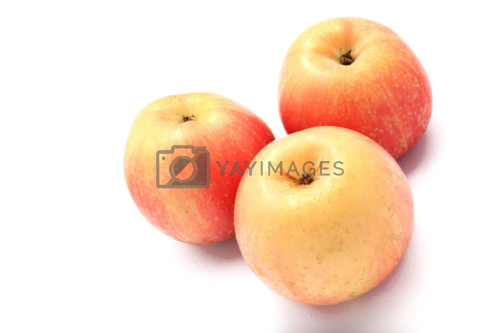 Royalty free image of  three apples by leungchopan