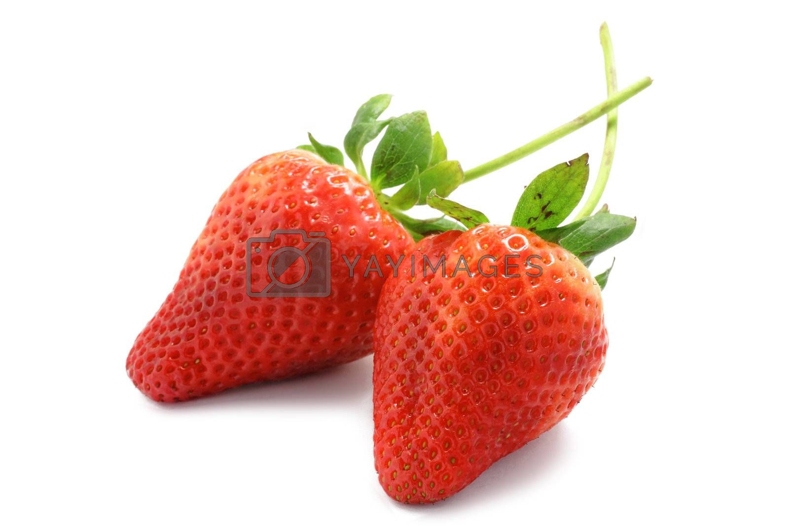 Royalty free image of two strawberries on white background by leungchopan