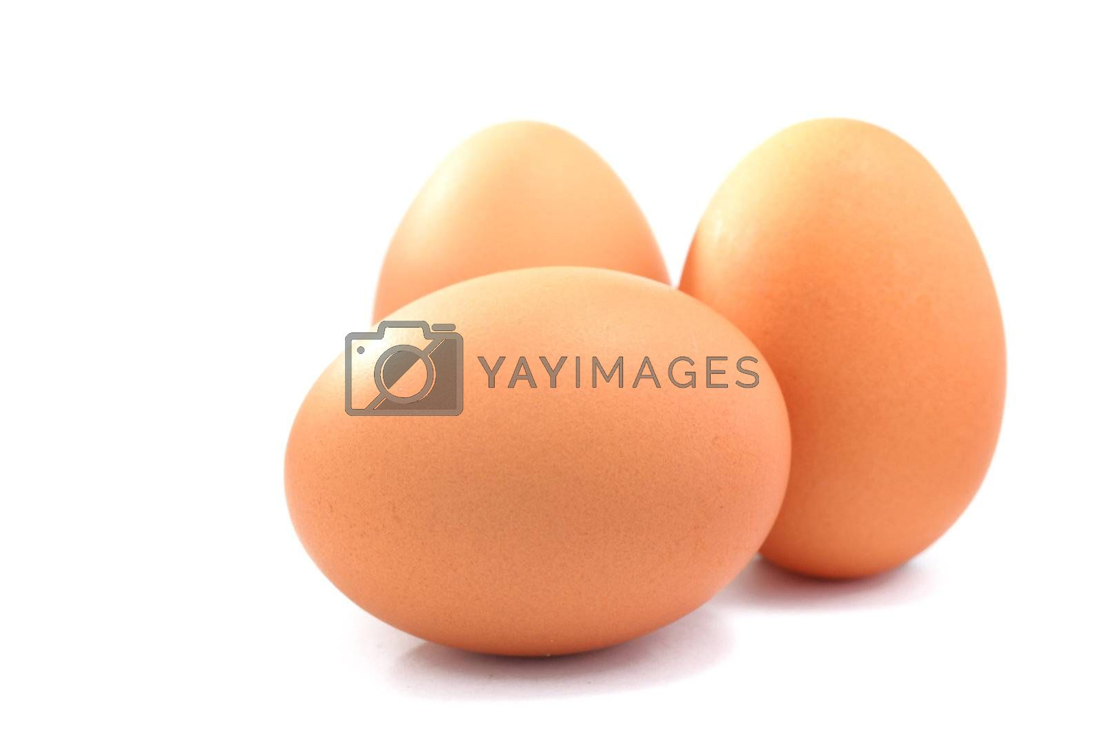 Royalty free image of three eggs by leungchopan