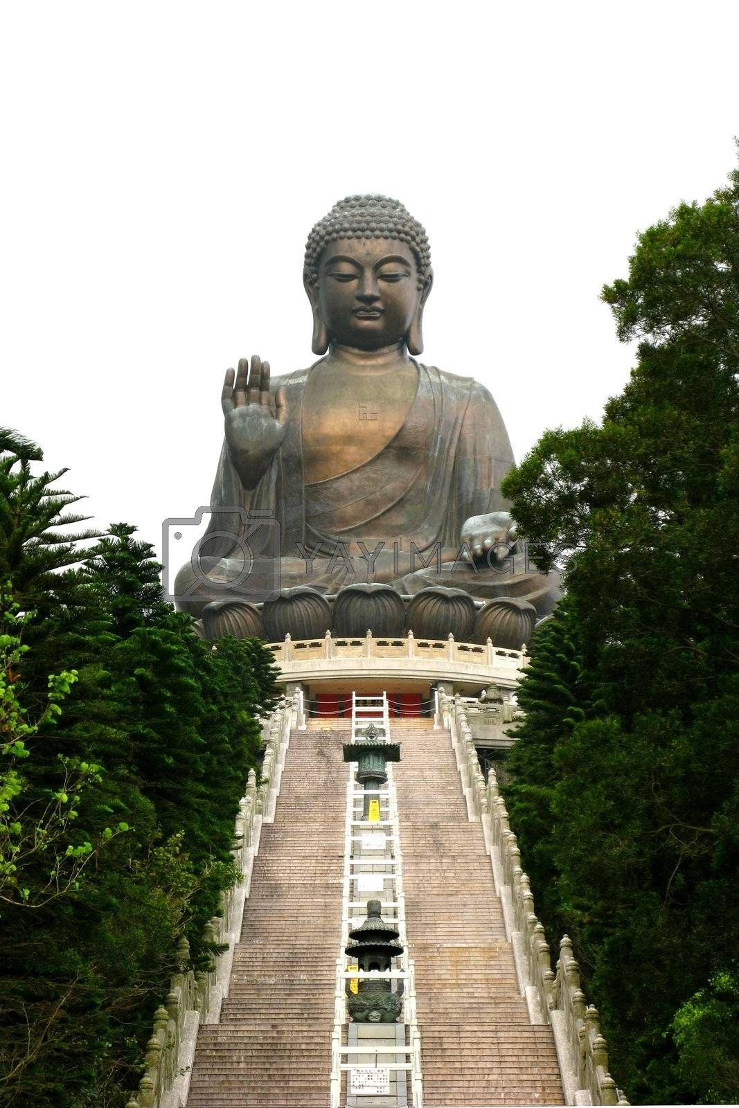 Tian Tan Buddha by leungchopan