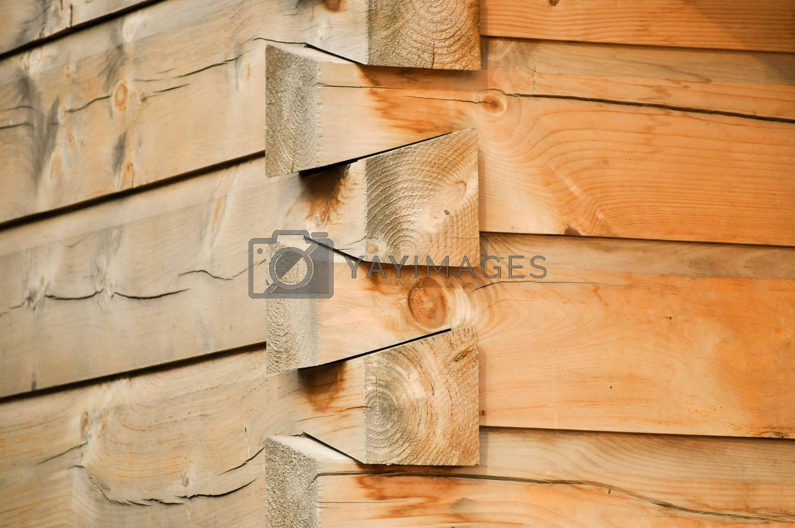 Royalty free image of Cabin Corner by RefocusPhoto