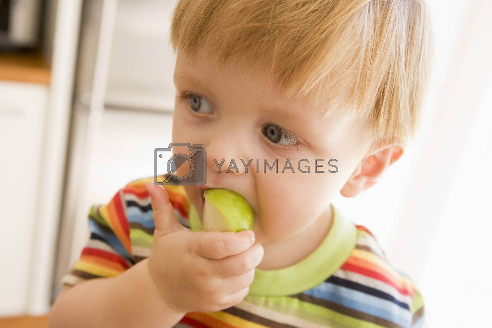 Young boy eating apple indoors by MonkeyBusiness