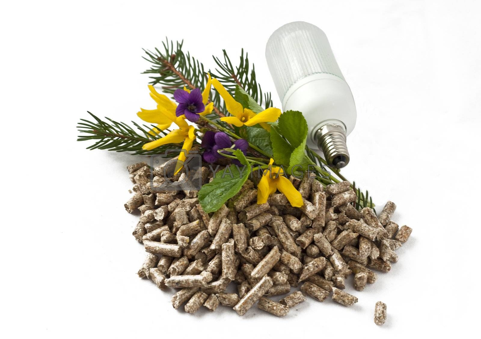pellet, light bulb and spring flowers on a white background