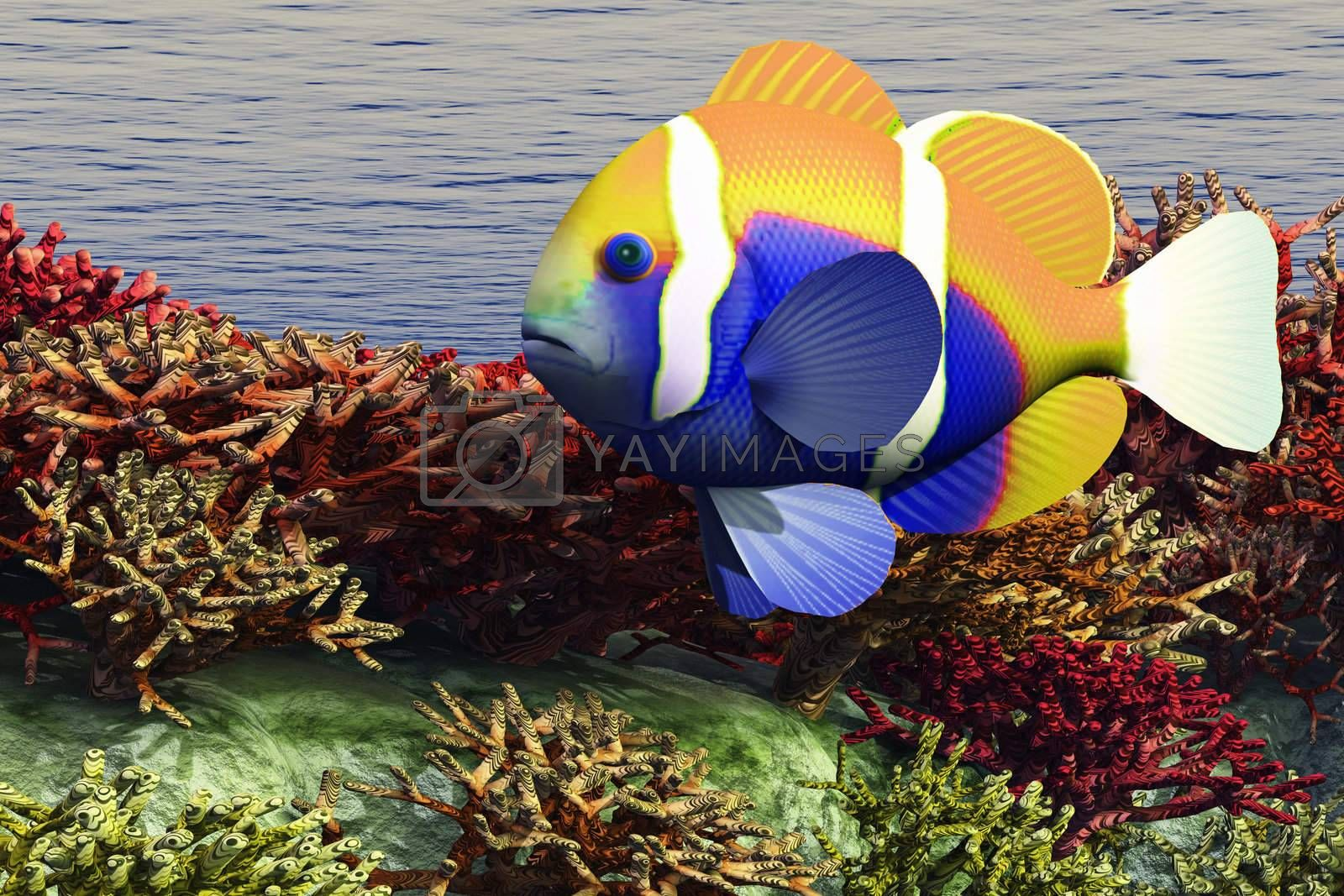A colorful clown-fish swims among the corals of an ocean reef.