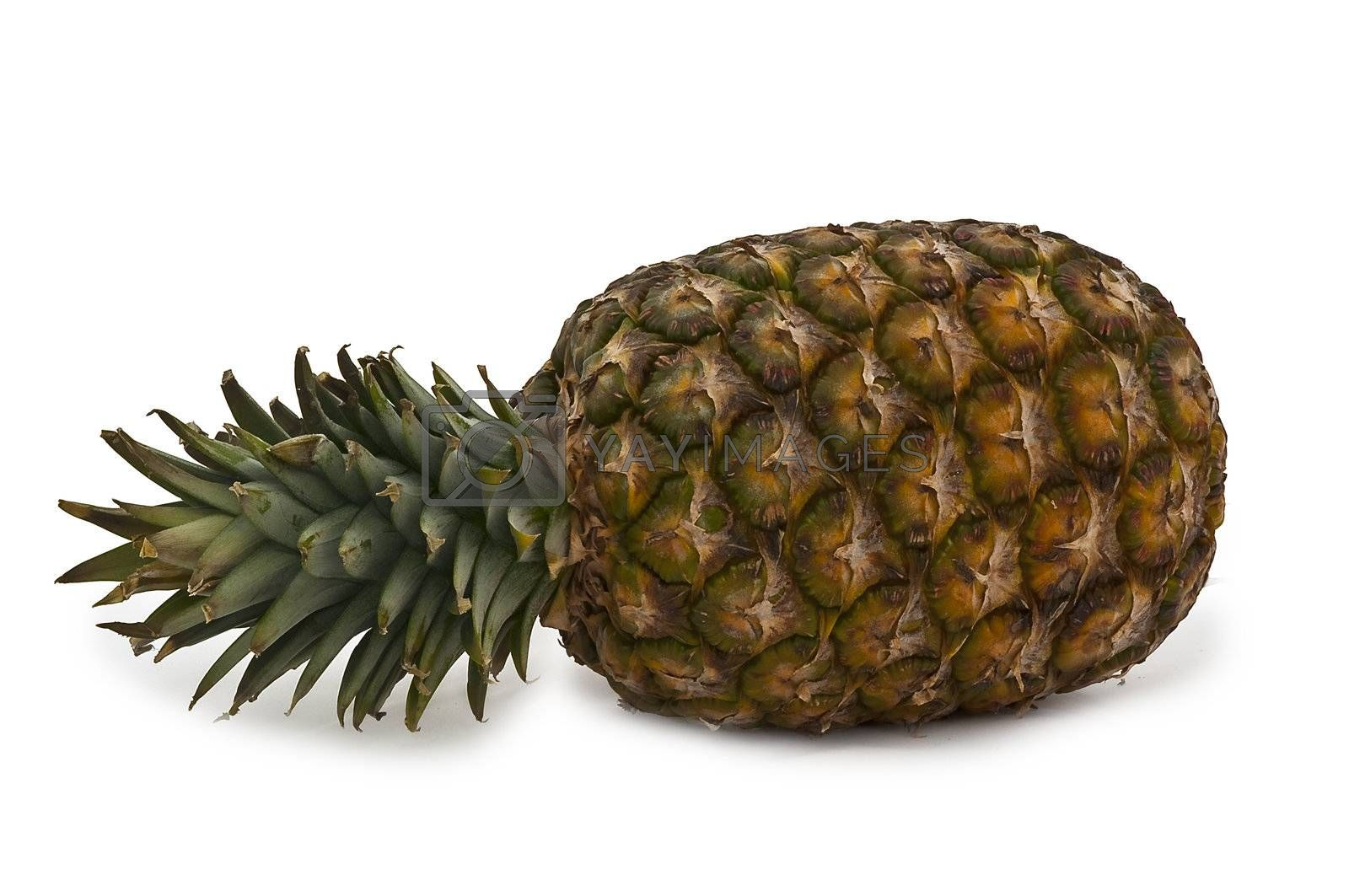entire clump with pineapple on white background