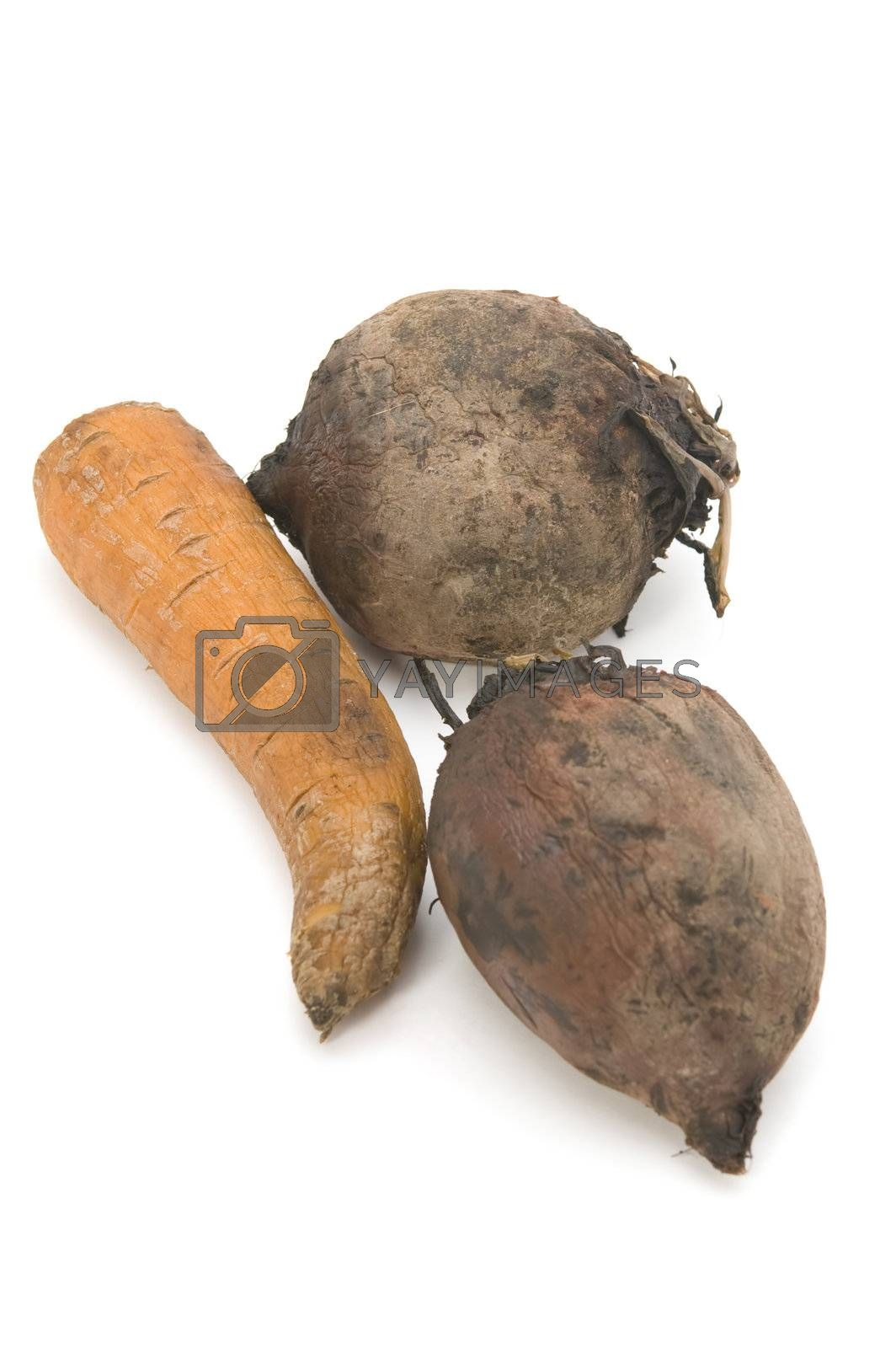 Royalty free image of boiled beet and carrot by Garry518