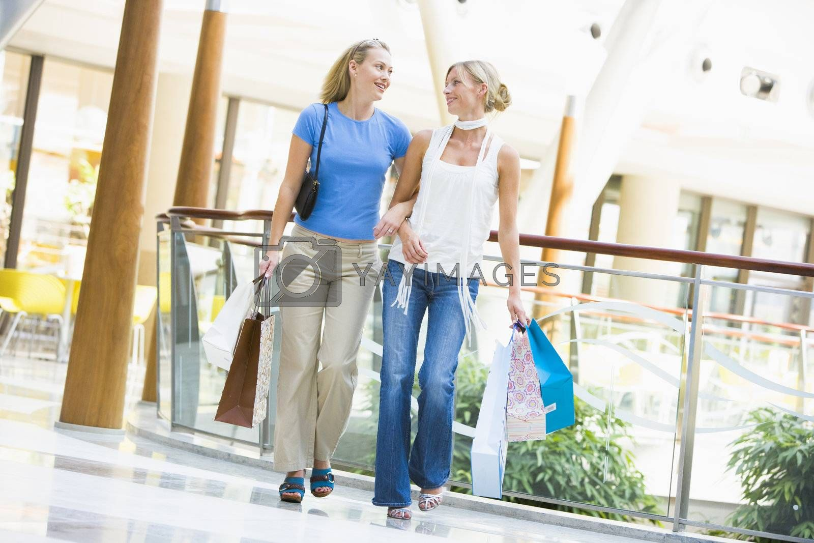 Friends shopping together carrying bags