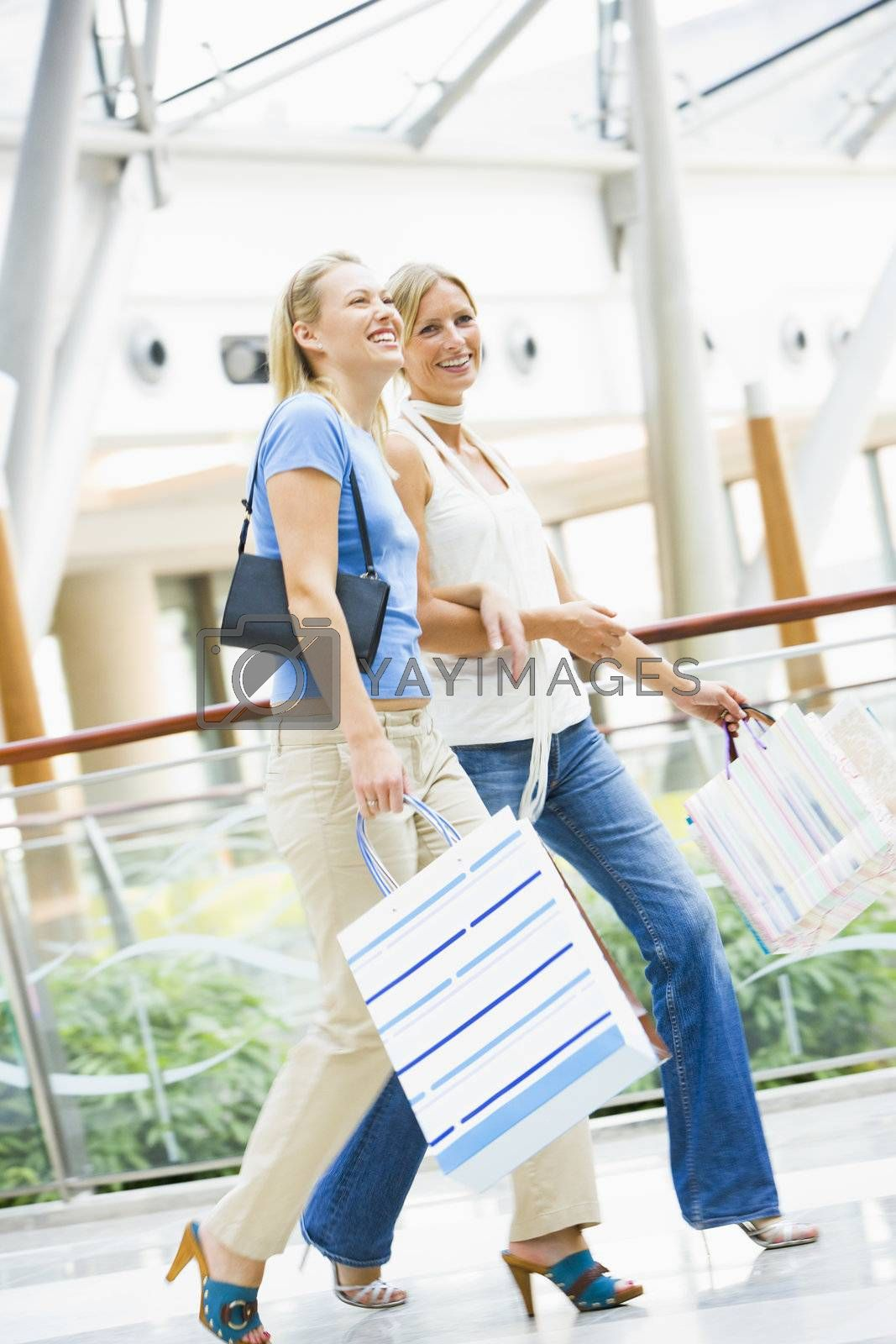 Friends shopping in mall carrying bags