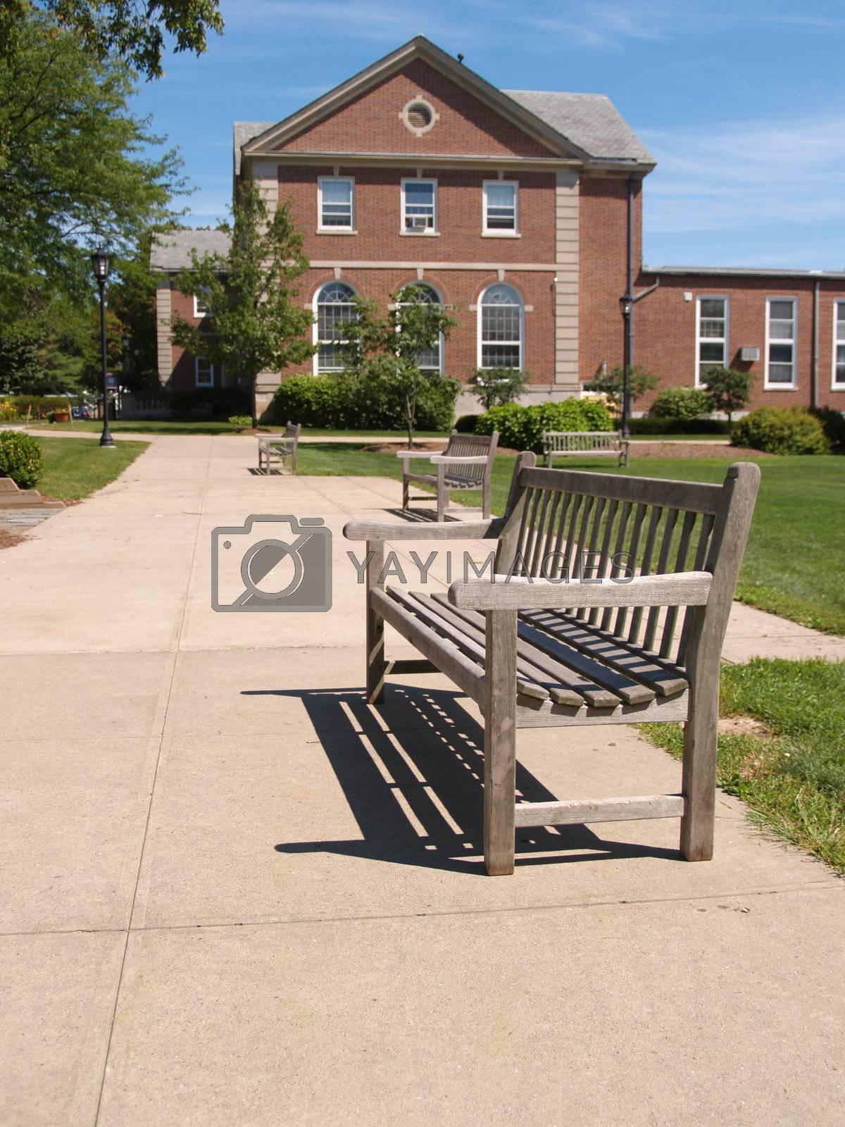 one empty wood bench by a sidewalk