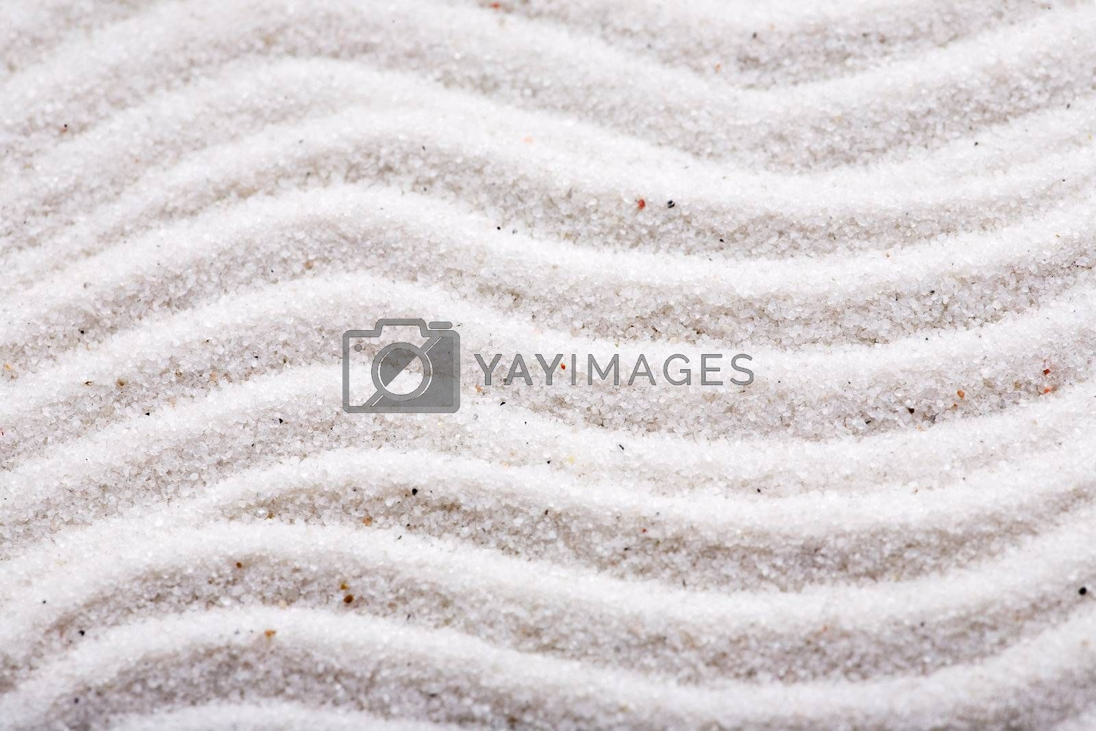 Background macro texture of rippled sand