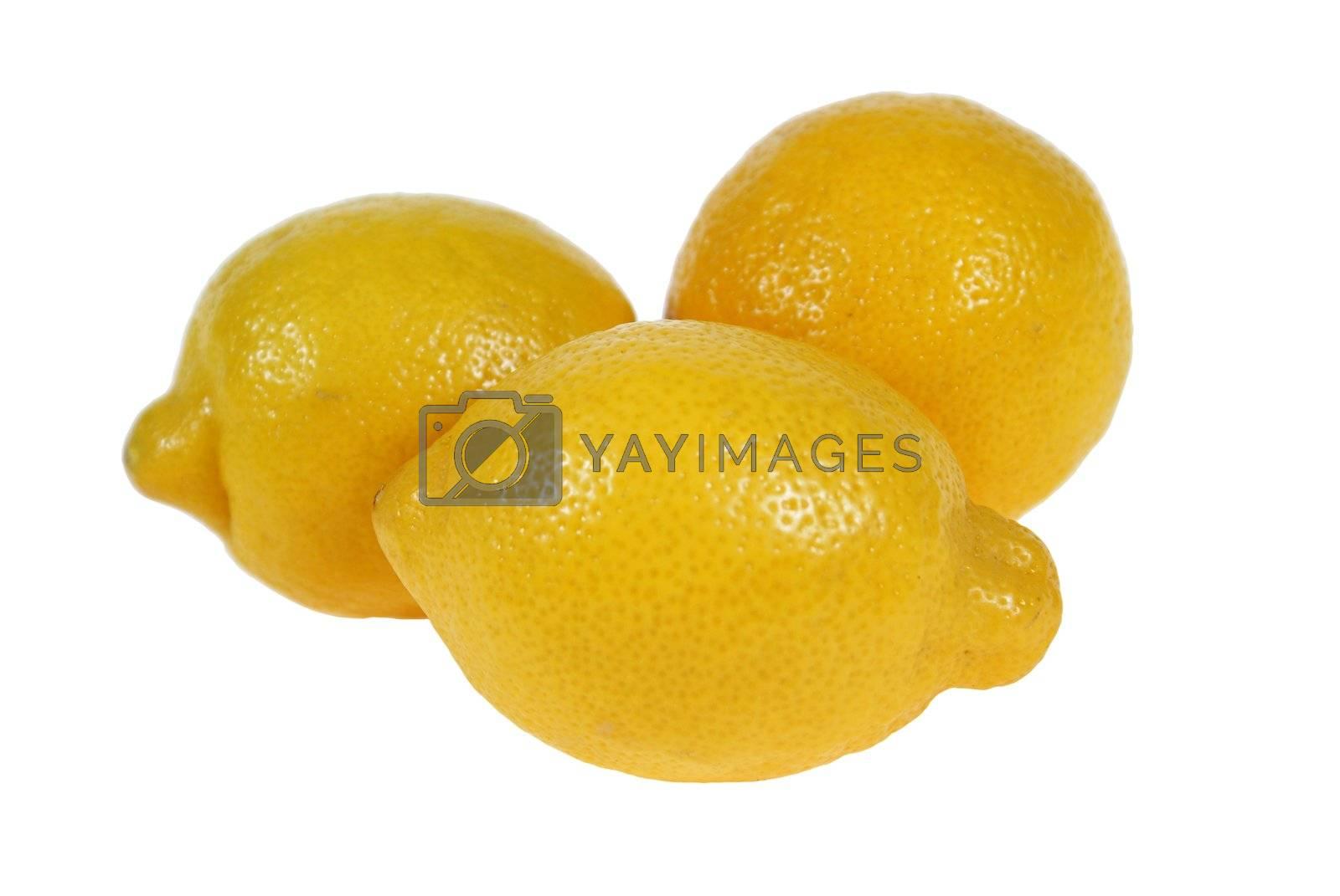 lemon by dabjola