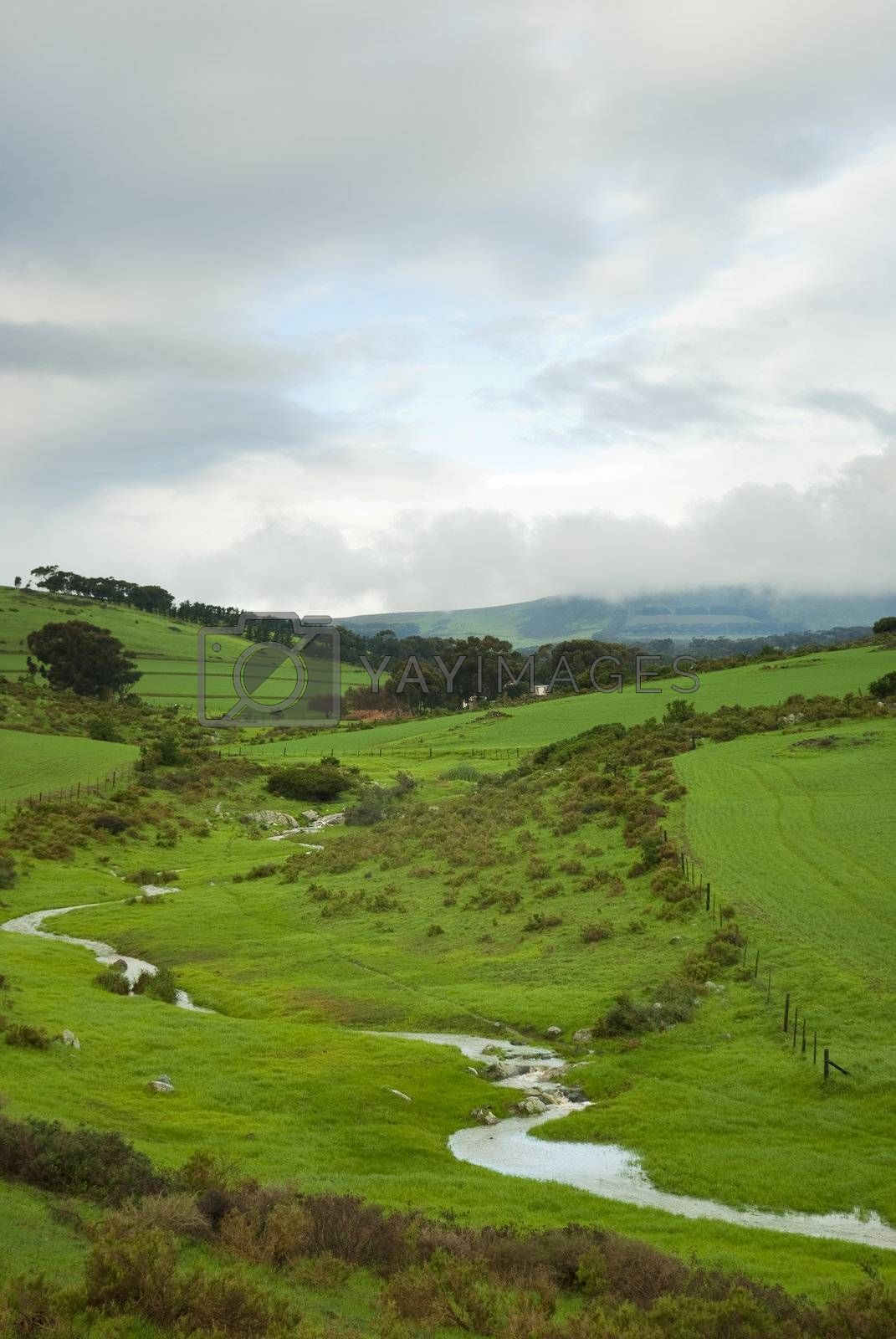 Green fields with stream running through on a cloudy day