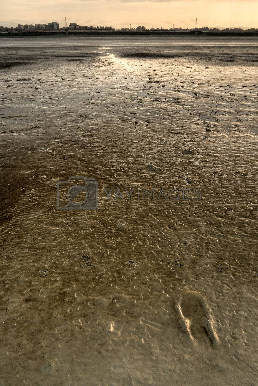 Single footprint on mud of river with nobody.