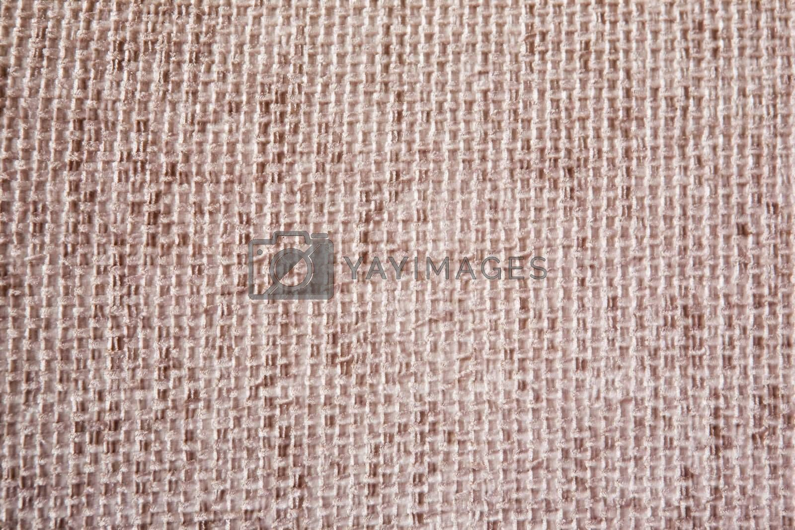 A detail image of a couch material