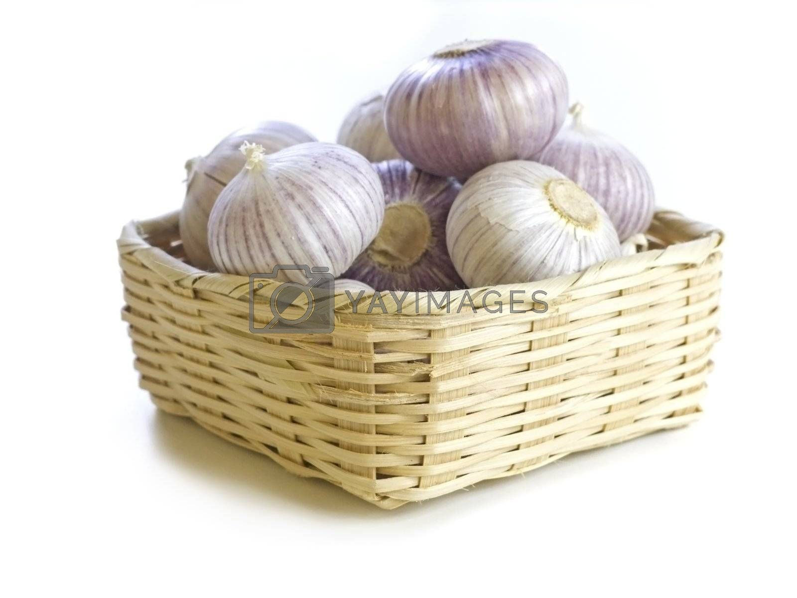 close-up of fresh purple garlic  isolated on white background