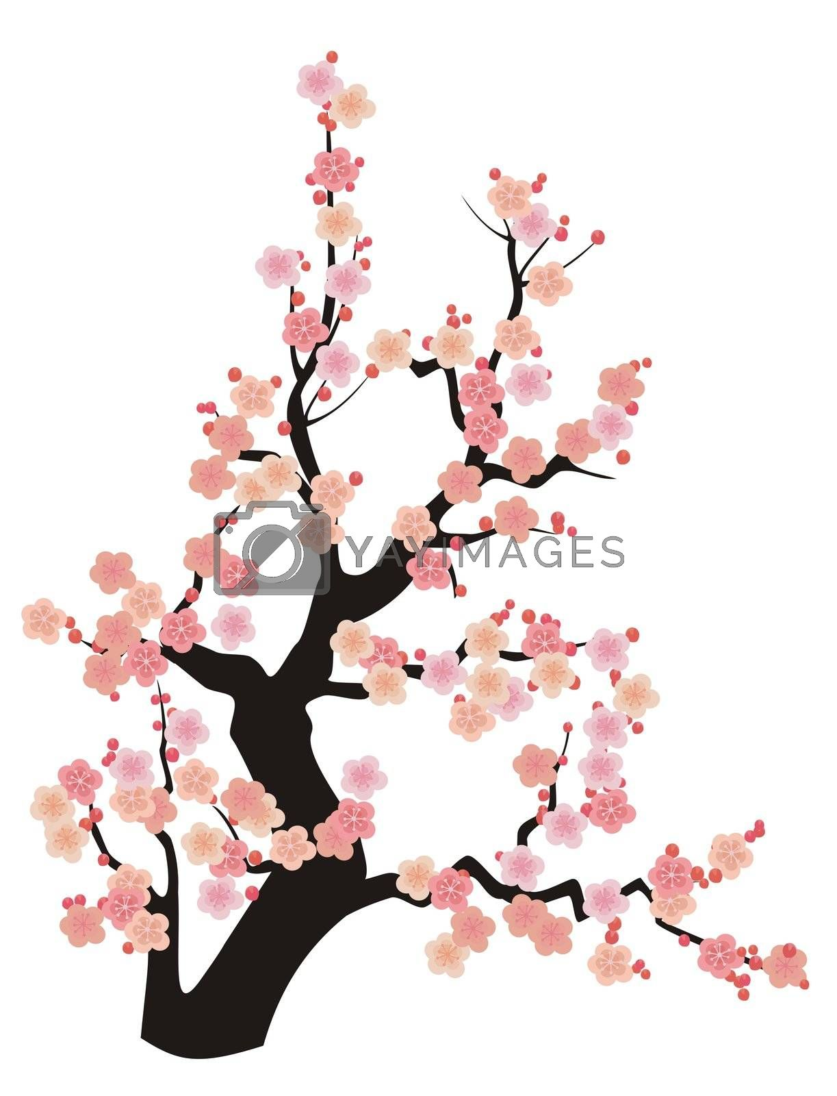 Cherry Blossom Illustration (Sakura), Asian style