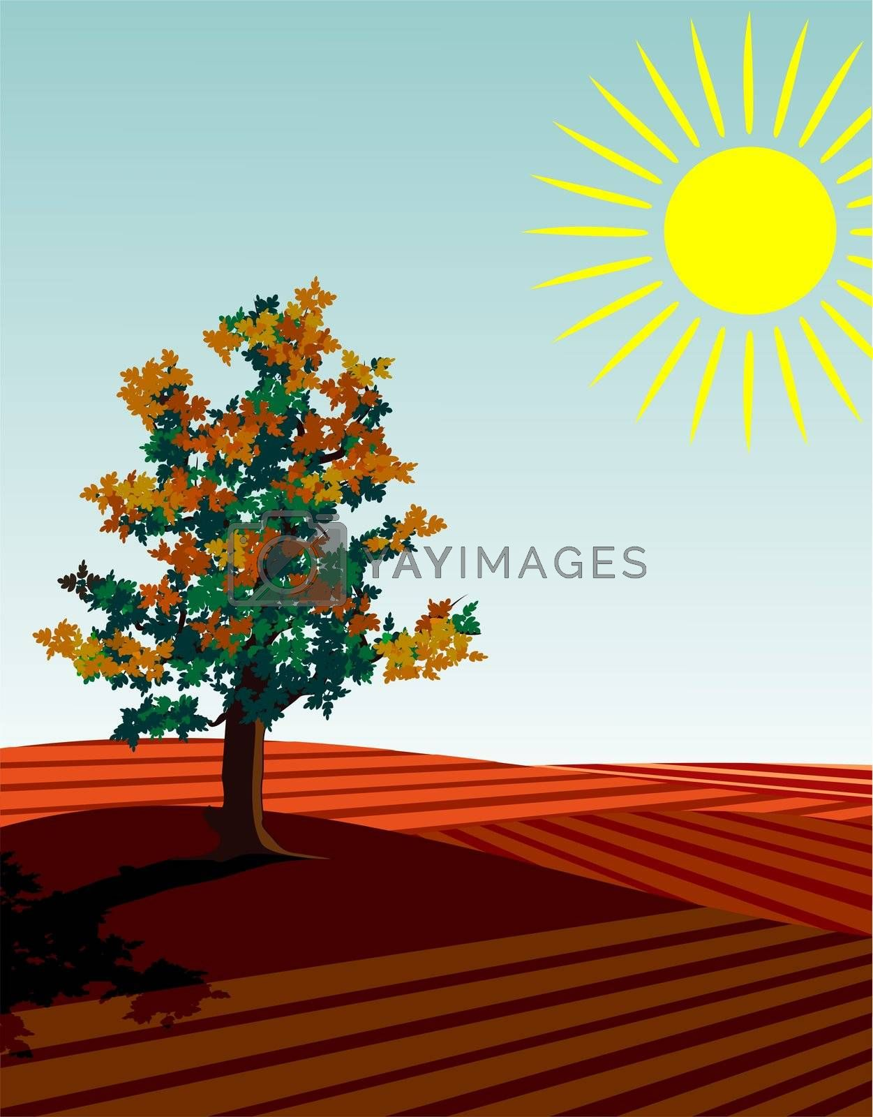 four seasons illustration: autumn single tree in the fields at harvest time
