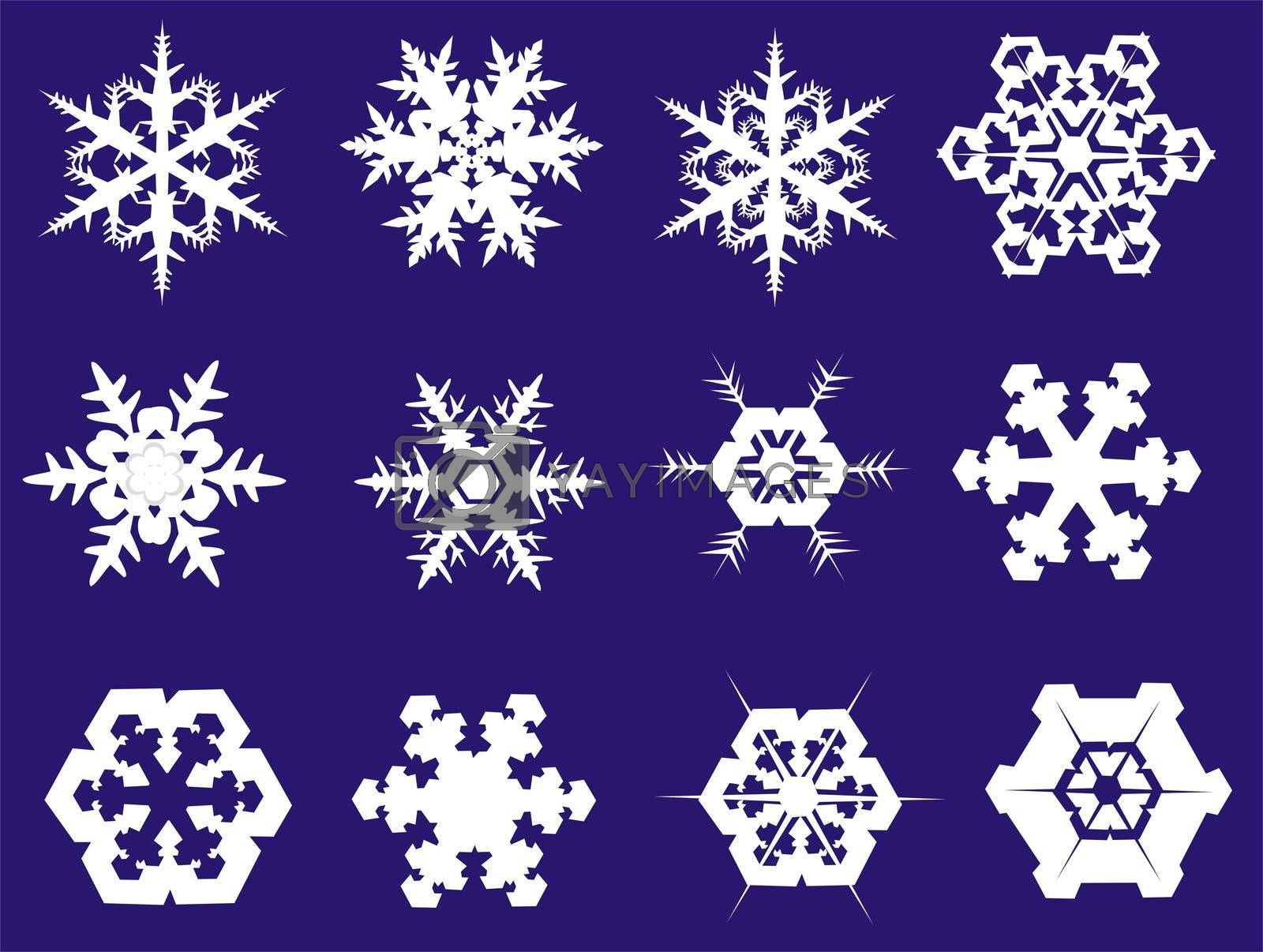 Snowflakes in twelve different shapes, illustration