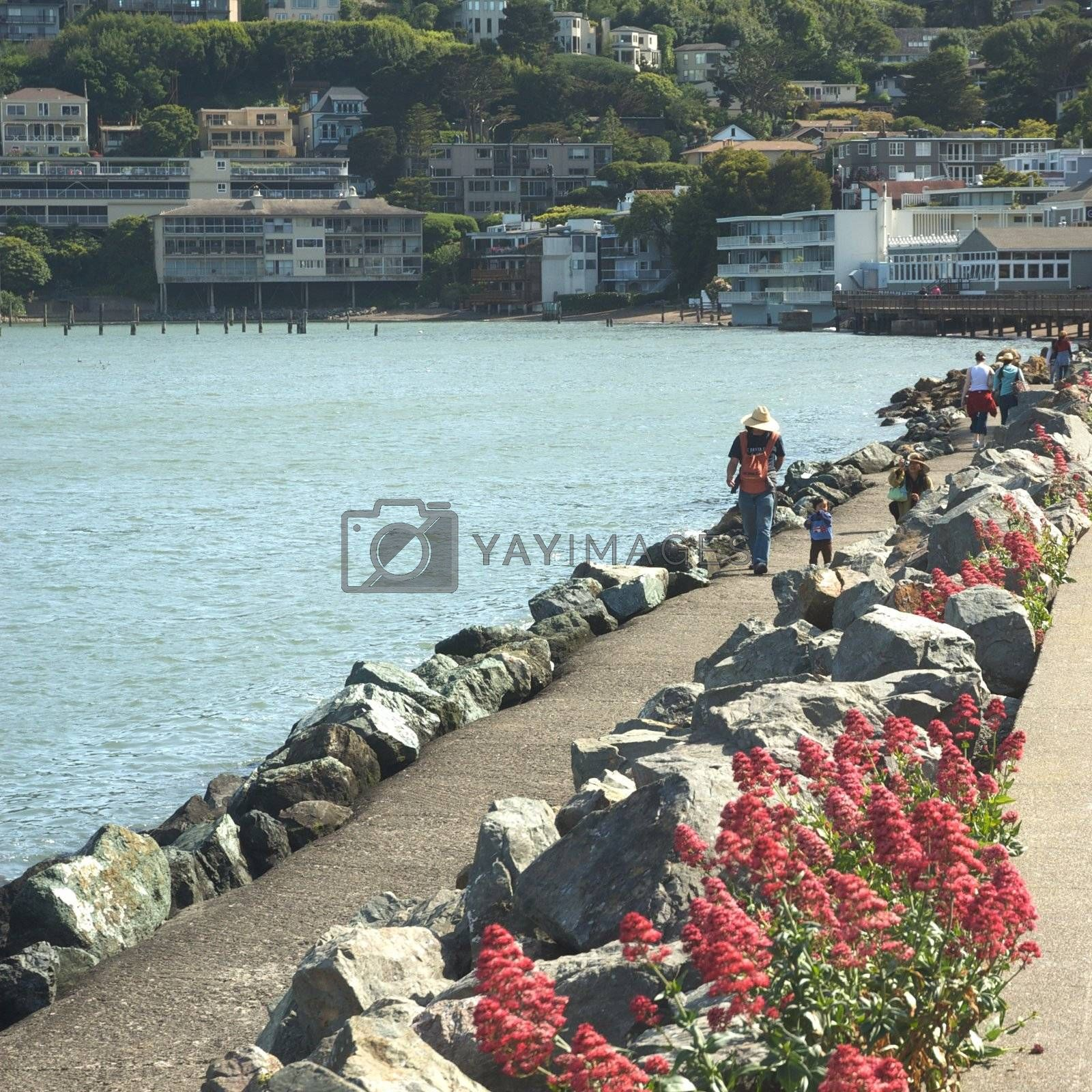 Sausalito, a town on San Francisco Bay in Marin County, USA
