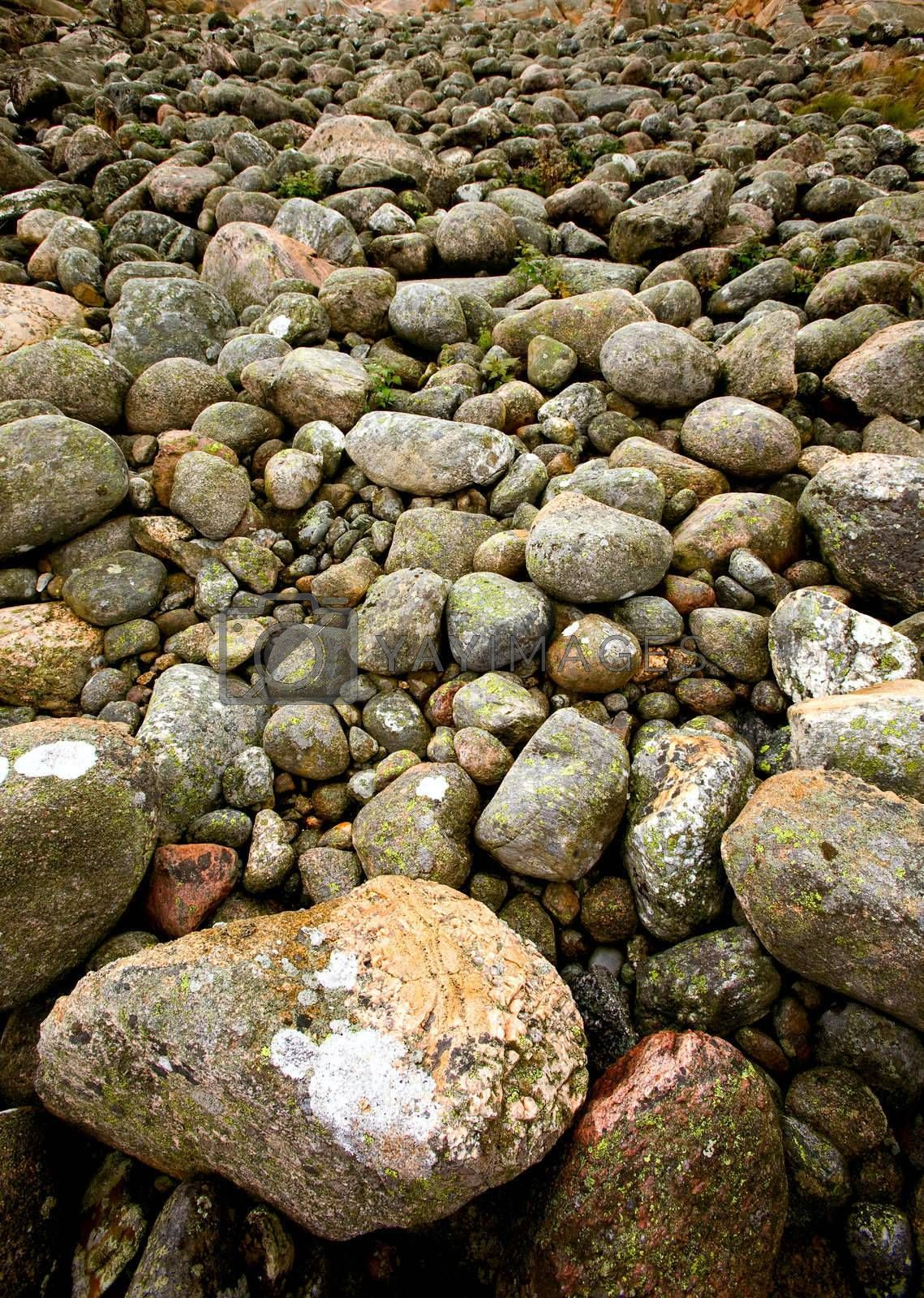 A rock background texture
