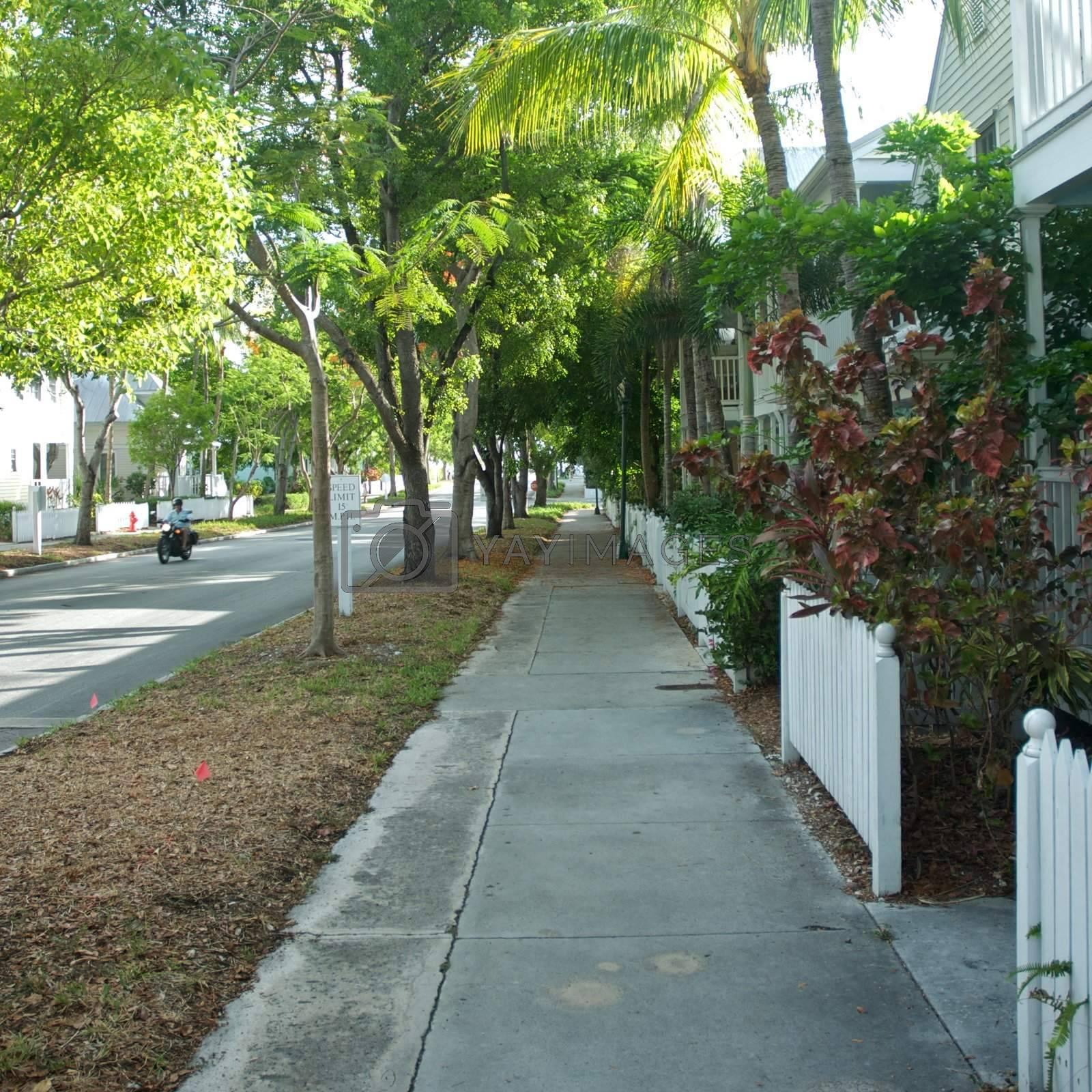 Downtown Key West, Florida by jedphoto