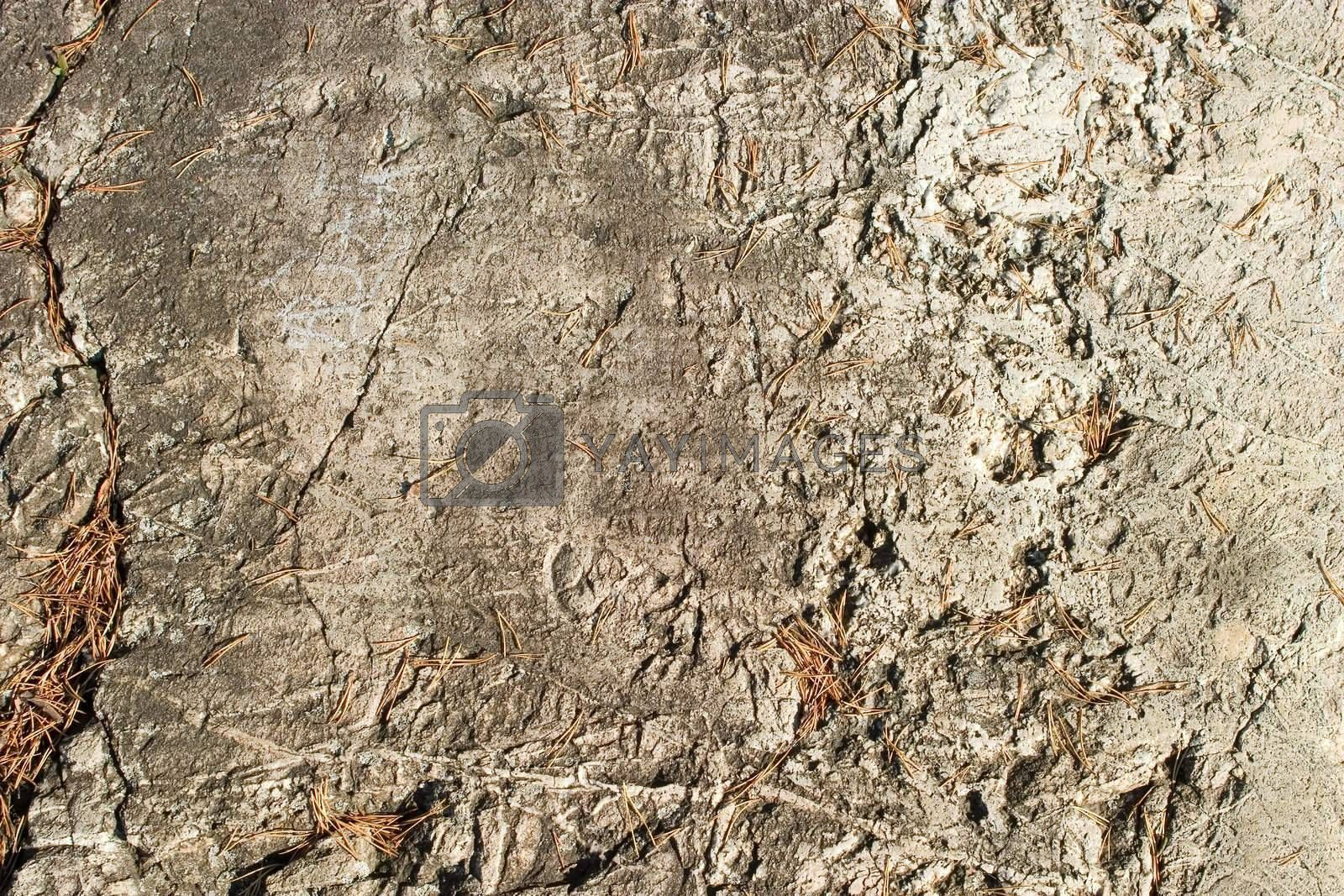 A layerd rock background texture from oslo, norway.