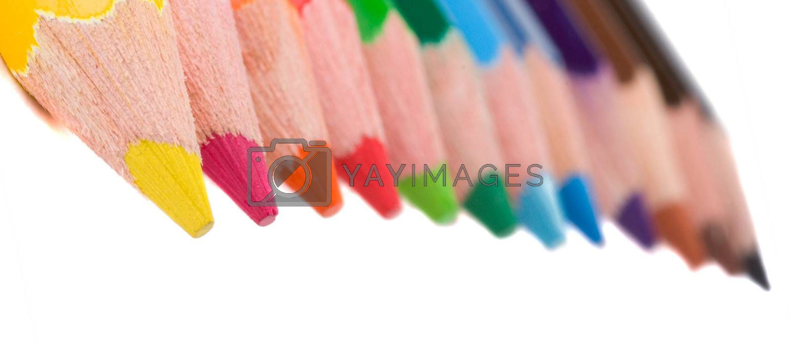 close-up group of color pencils, isolated on white