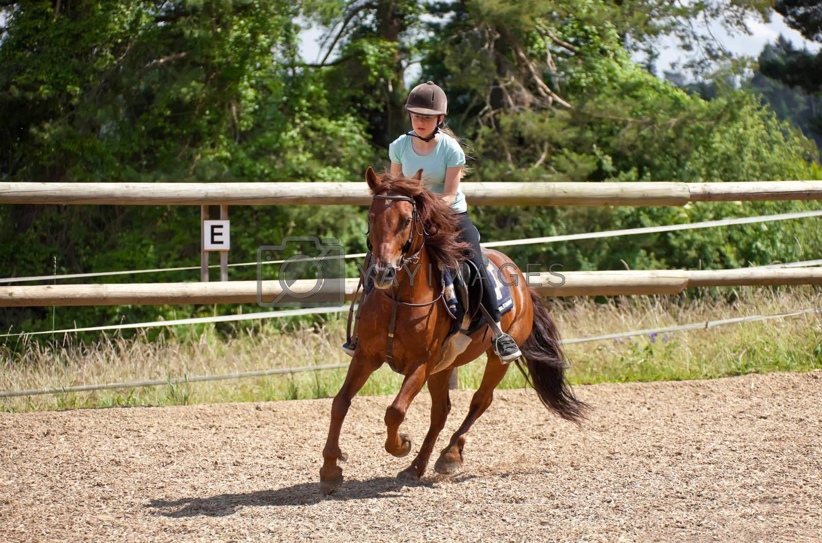 This image shows a portrait from a riding girl