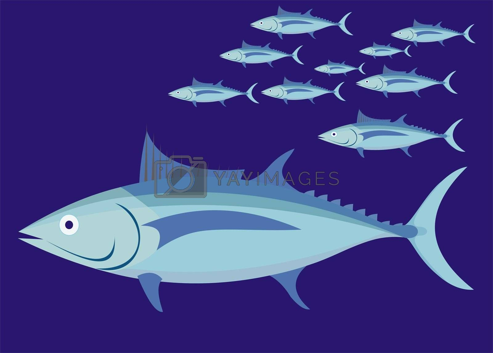 tuna fish illustration, no gradie6ts