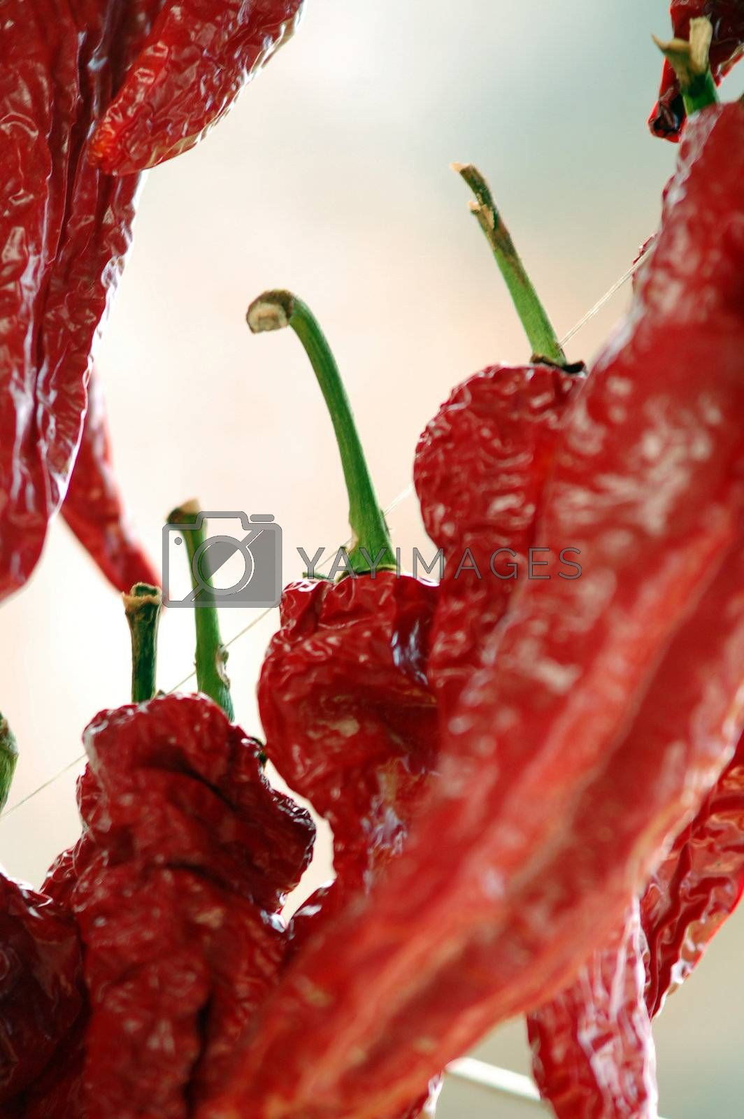 red pepper,dried
