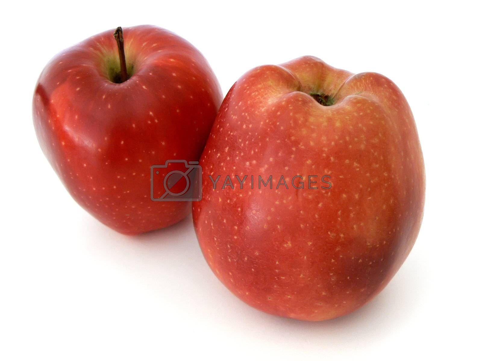 Two red apples isolated on white background