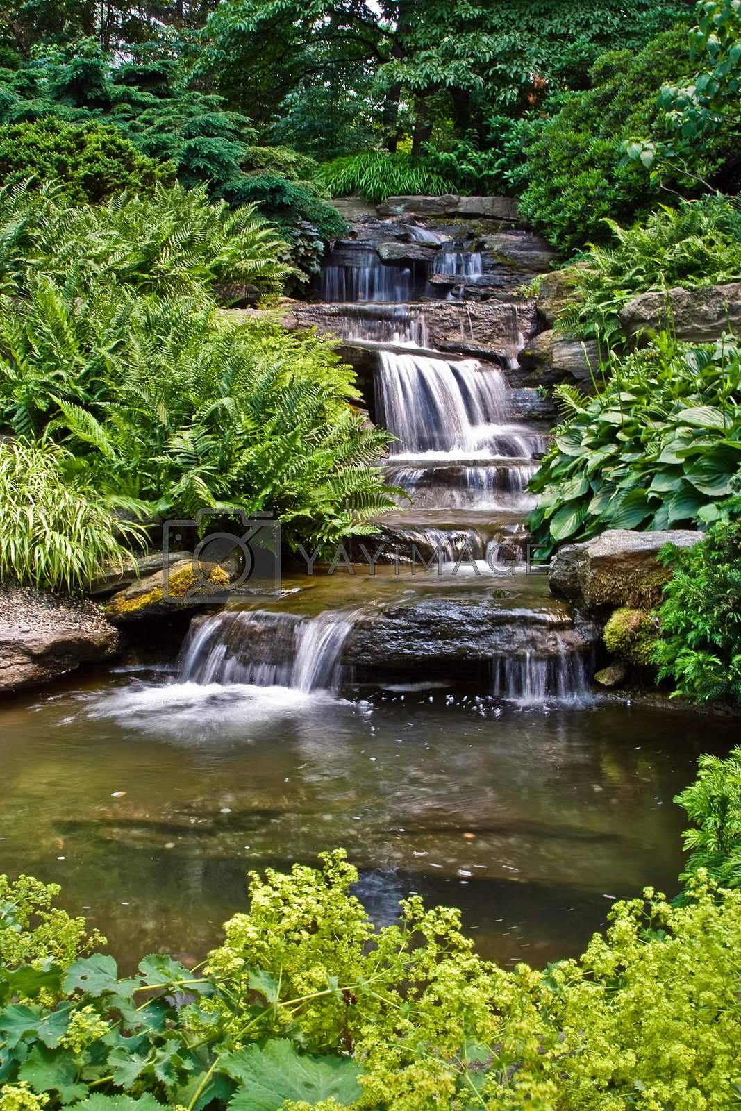 Beautiful multi-layered waterfall between vegetation.