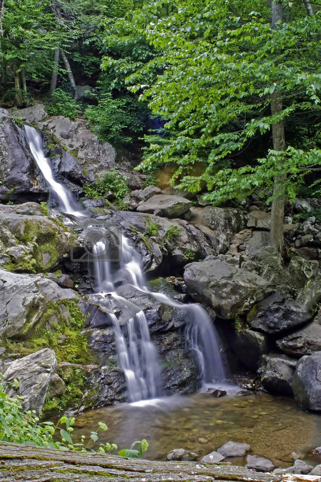 A layered waterfall with flowing water surrounded with vegetation