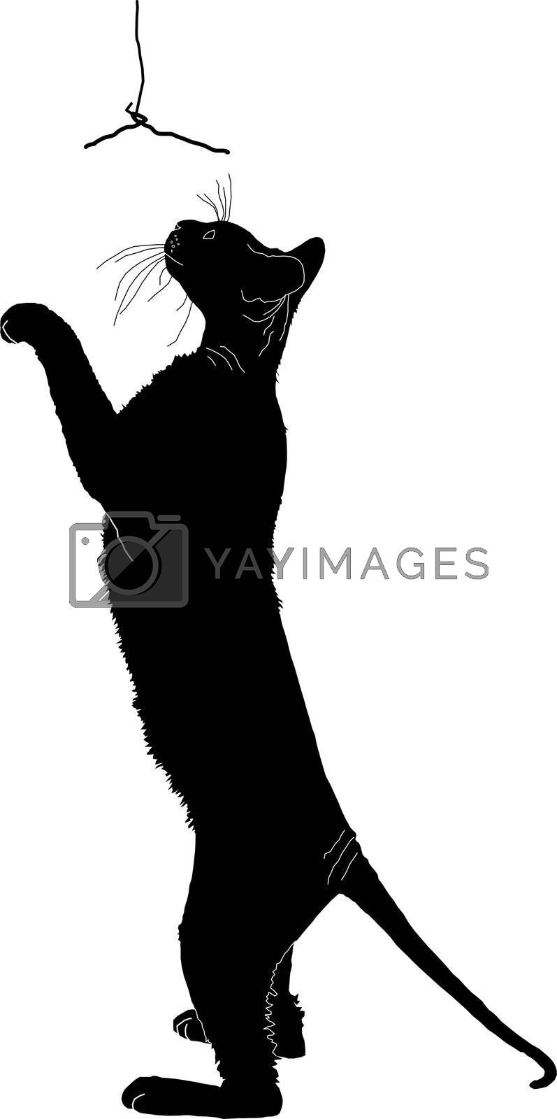 silhouette of a cat by Lyudmila