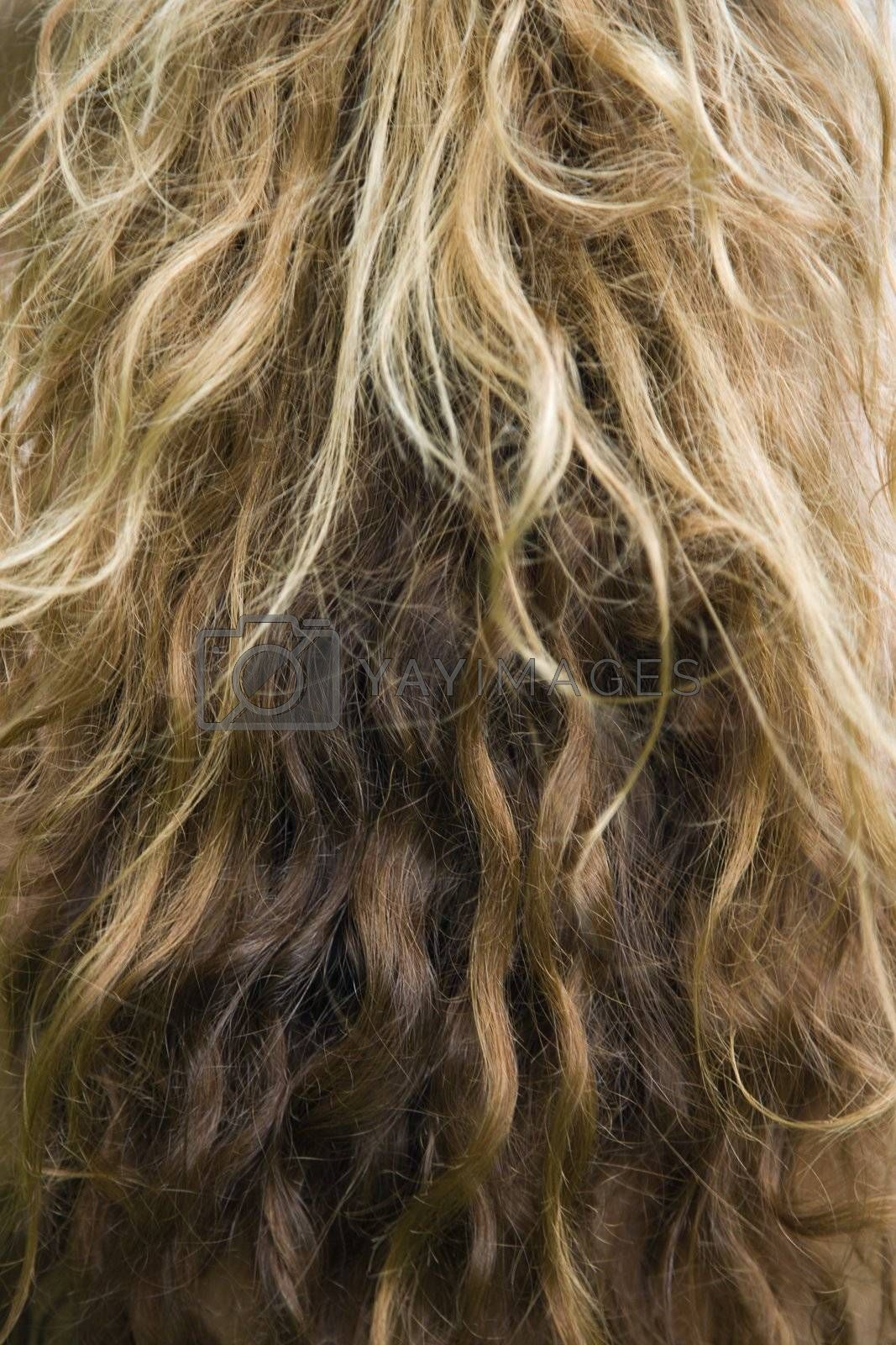 Close up of wavy dirty blond hair texture.