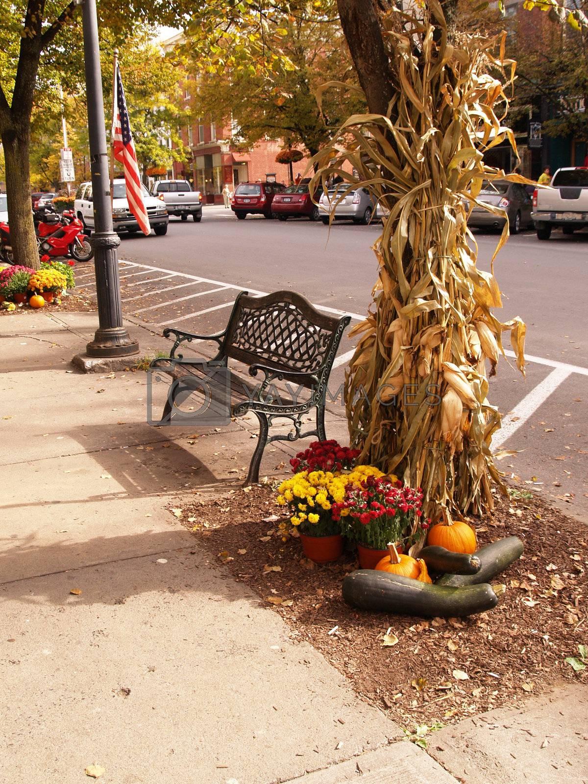 bench by sidewalk in Cooperstown, New York