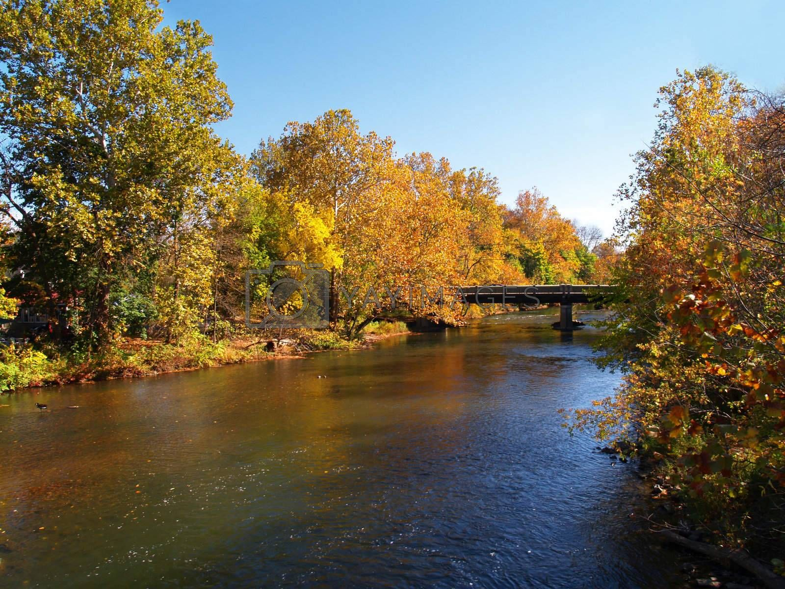 river and trees in autumn in Cliinton, New Jersey