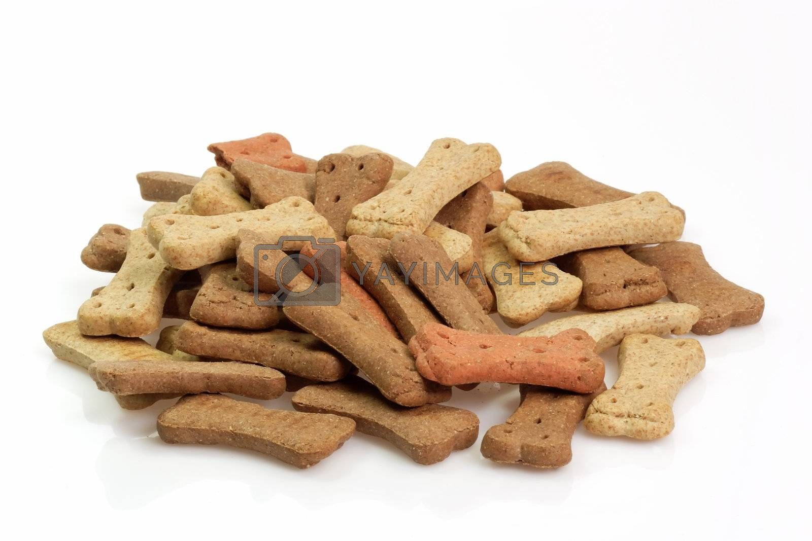 Dry dog food on bright background