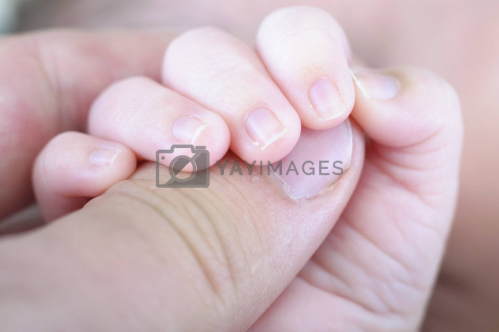 Picture of a new born hand. Father and son.