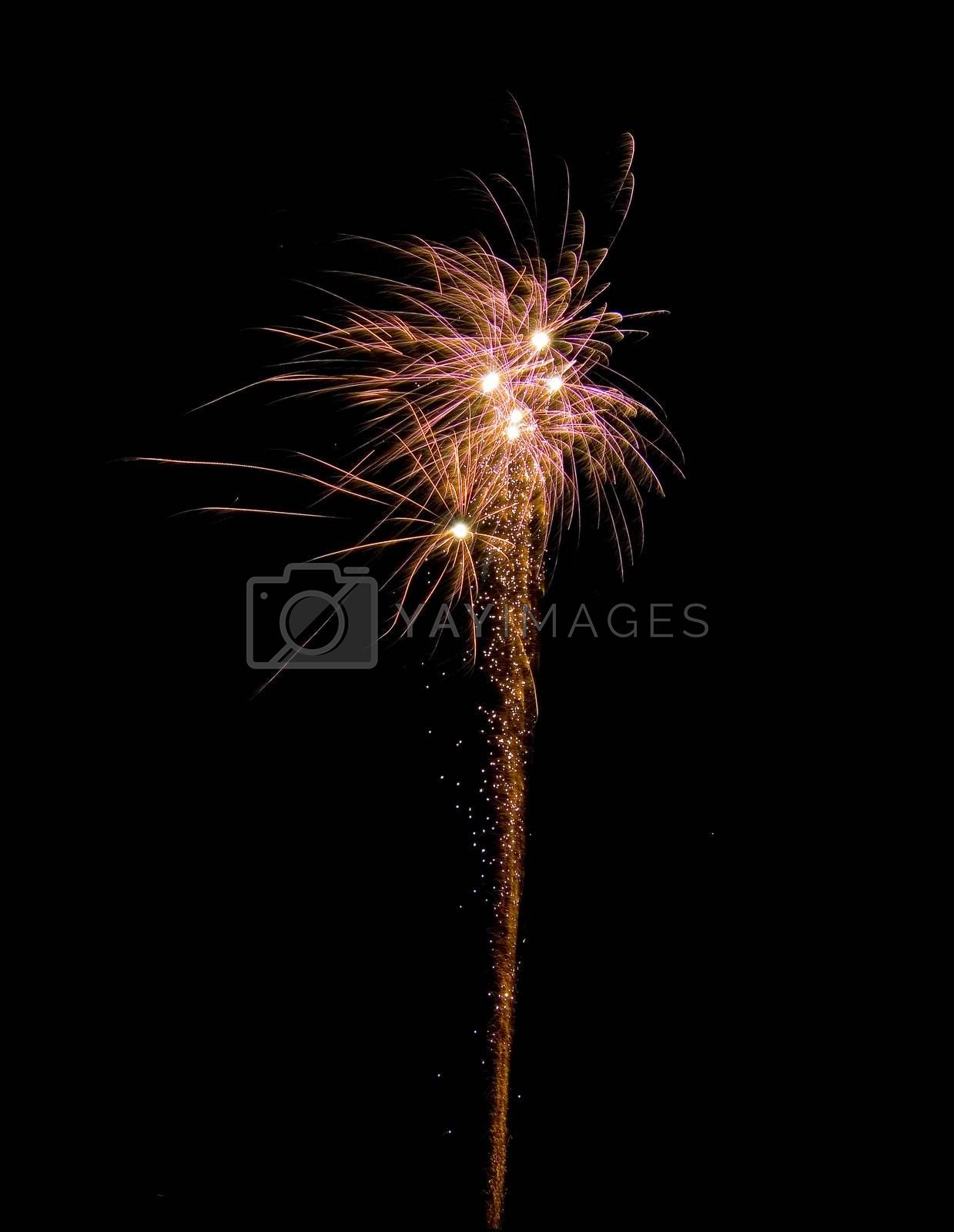 image of an explosion of a firework during a celebration