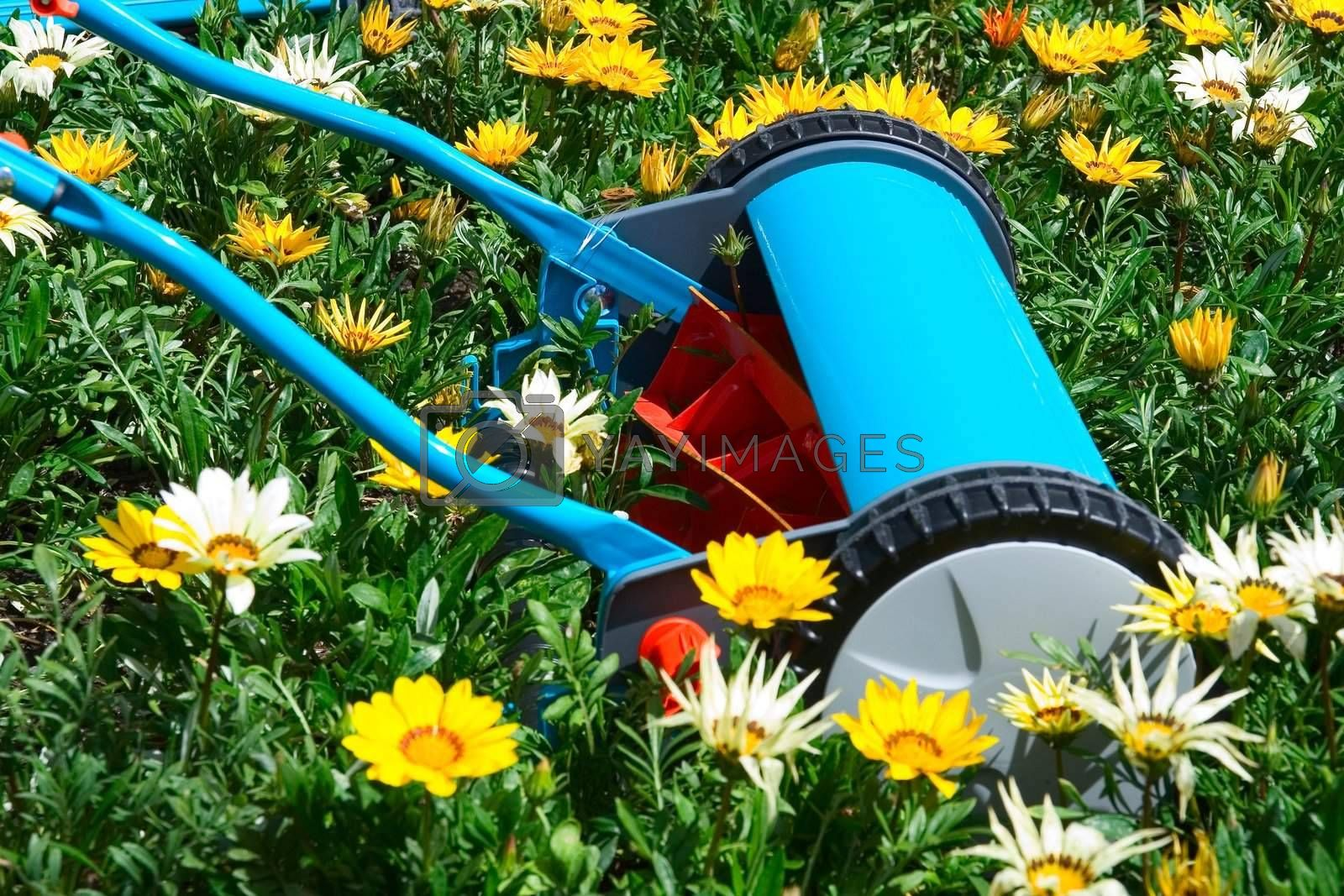 Mowing flowers by le_cyclope